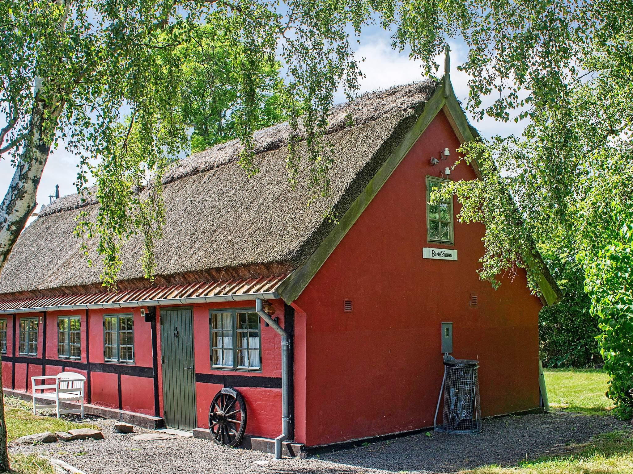 Ferienhaus Balka Strand (81872), Balke, , Bornholm, Dänemark, Bild 17