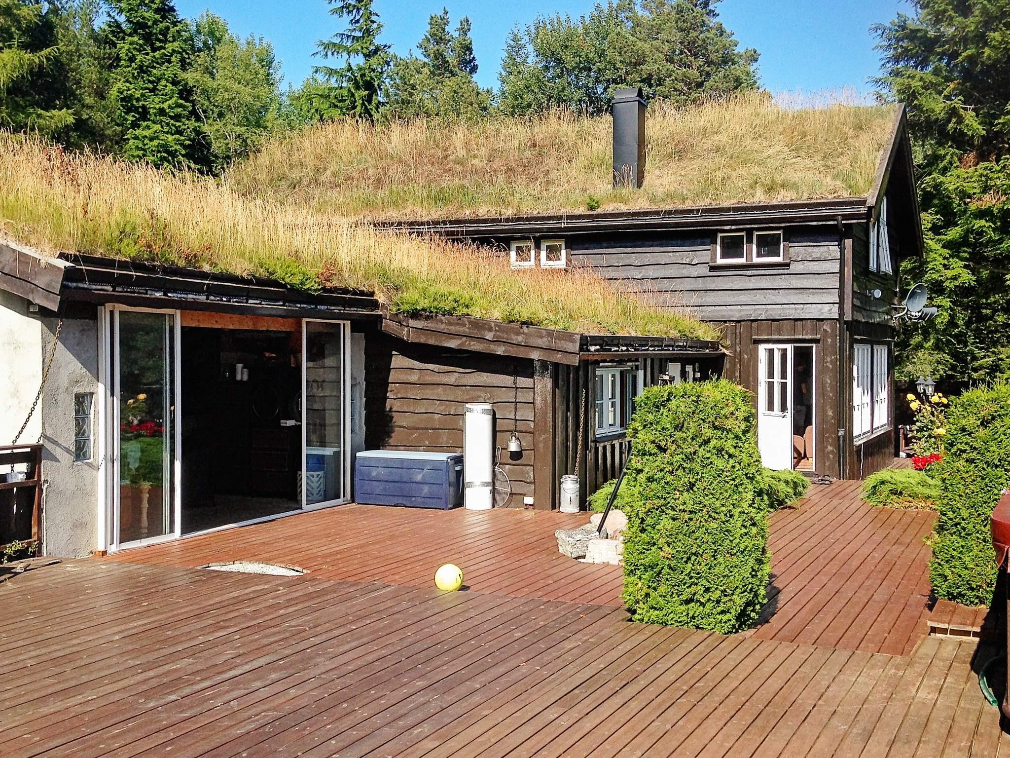 Ferienhaus Fjøseid (82072), Meisingset, More - Romsdal, Westnorwegen, Norwegen, Bild 19