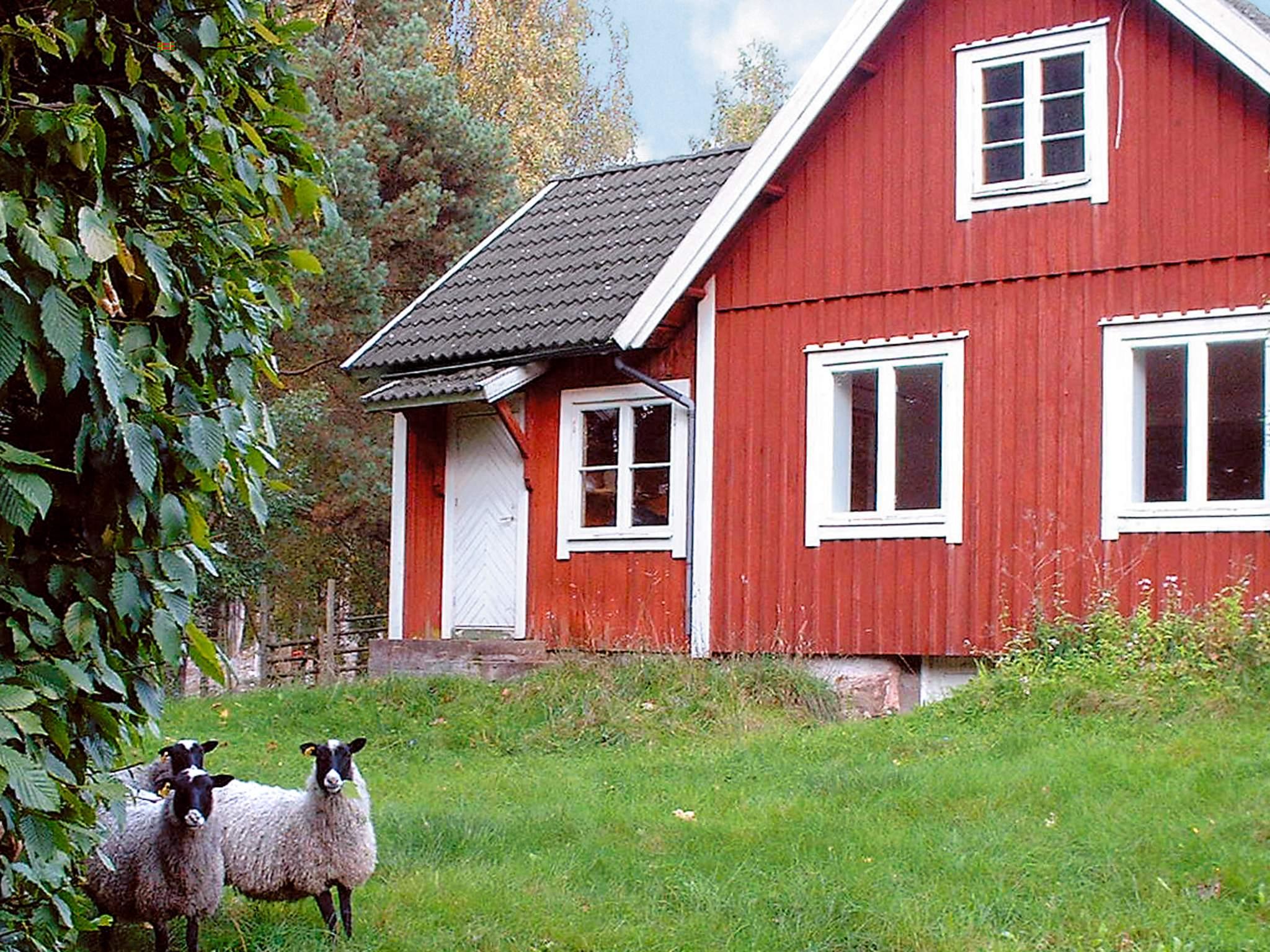 Ferienhaus Lönsboda (83974), Lönsboda, Skane län, Südschweden, Schweden, Bild 20