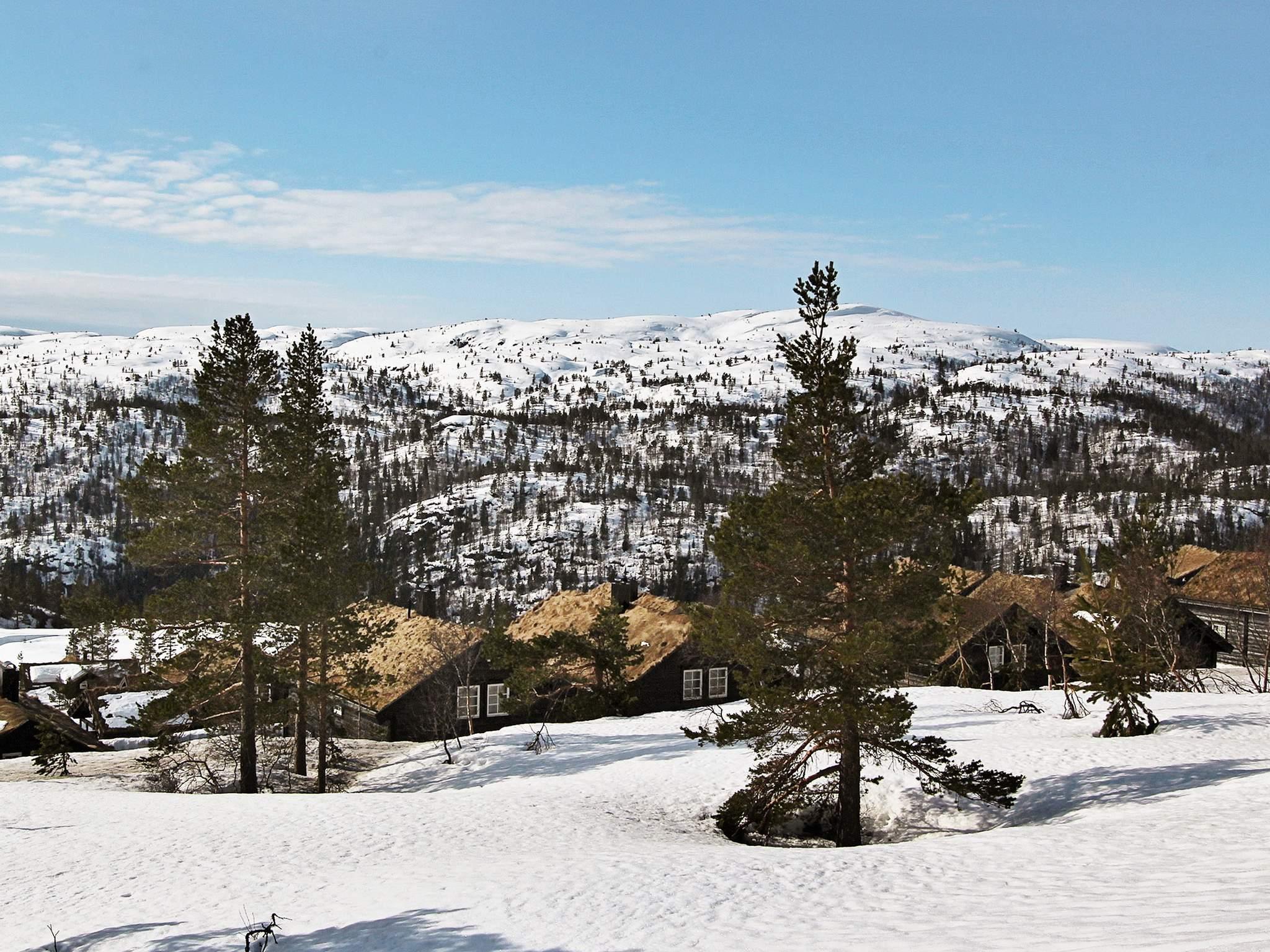 Ferienwohnung Bortelid (179794), Åseral, Agder West, Südnorwegen, Norwegen, Bild 21