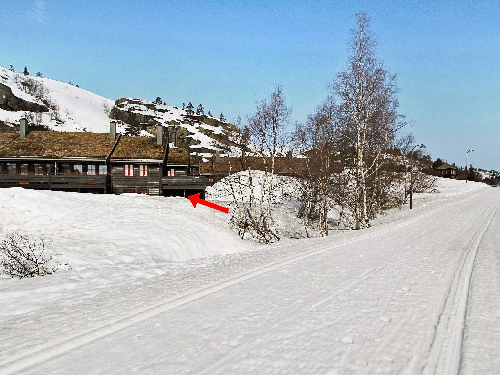 Ferienwohnung Bortelid (179794), Åseral, Agder West, Südnorwegen, Norwegen, Bild 20