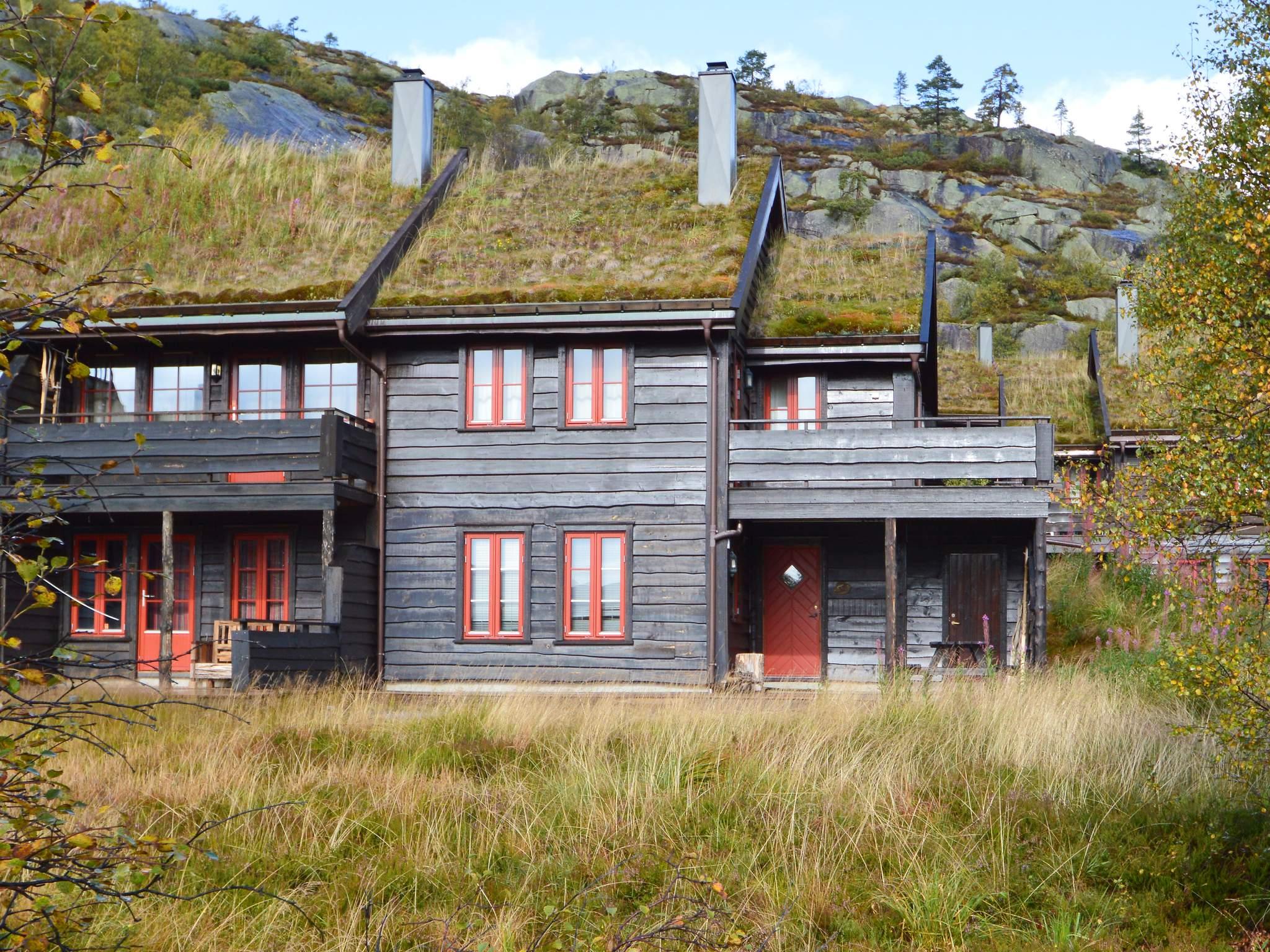 Ferienwohnung Bortelid (179794), Åseral, Agder West, Südnorwegen, Norwegen, Bild 1