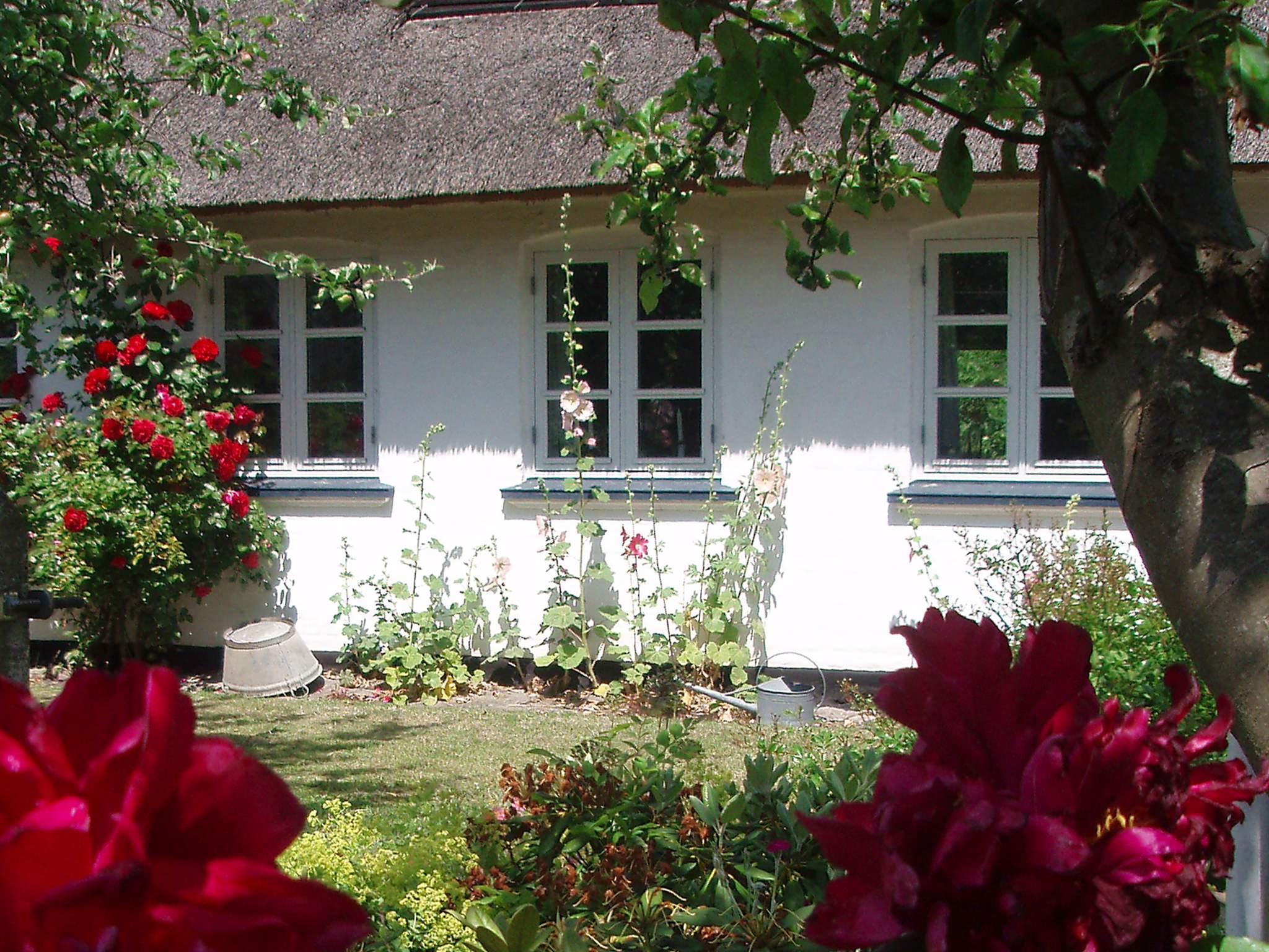 Ferienhaus Ærø/Marstal (207963), Marstal, , Ærø, Dänemark, Bild 13
