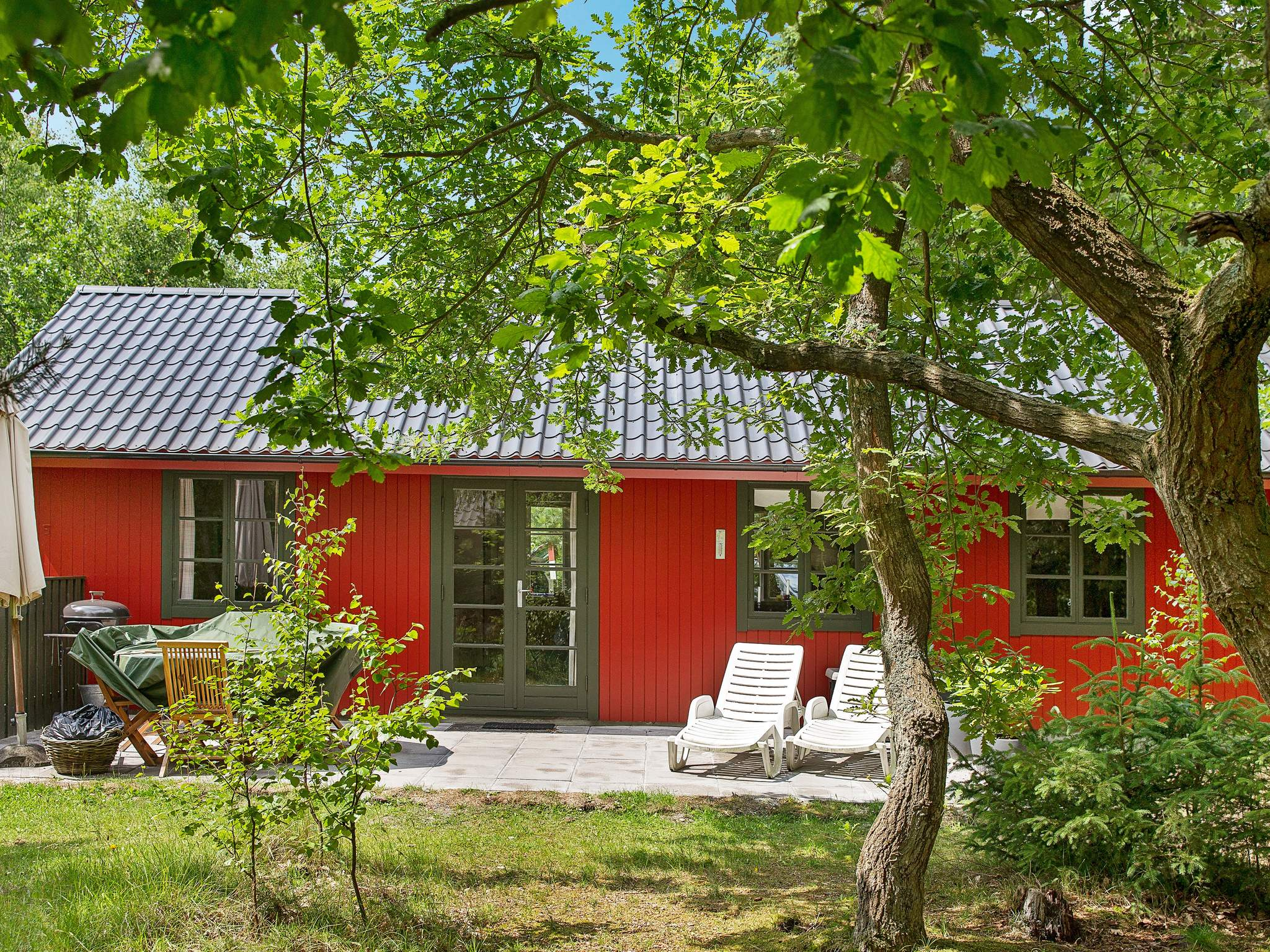 Ferienhaus Dueodde (241744), Nexø, , Bornholm, Dänemark, Bild 1