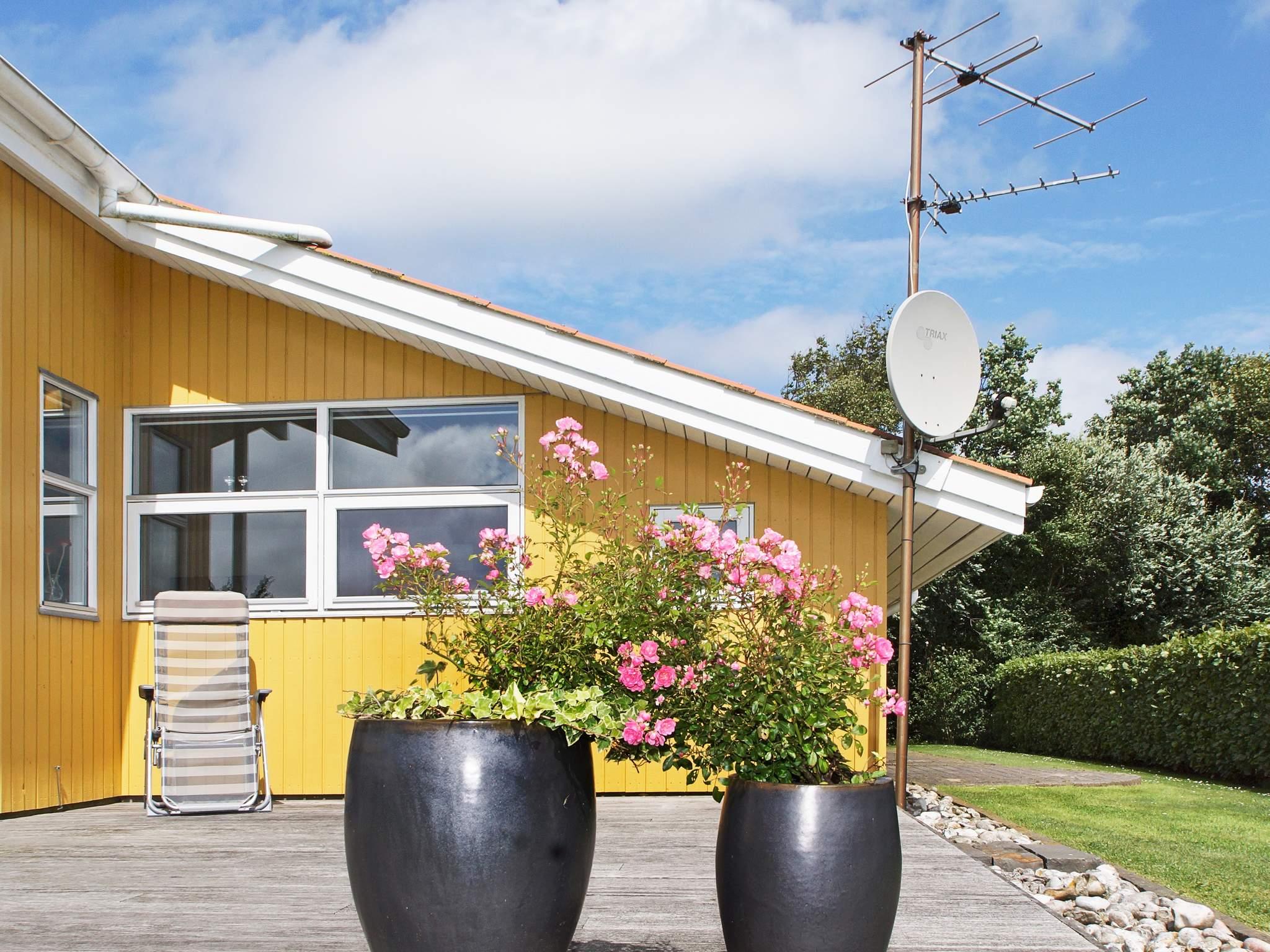 Ferienhaus Bork Havn (241763), Bork Havn, , Westjütland, Dänemark, Bild 15
