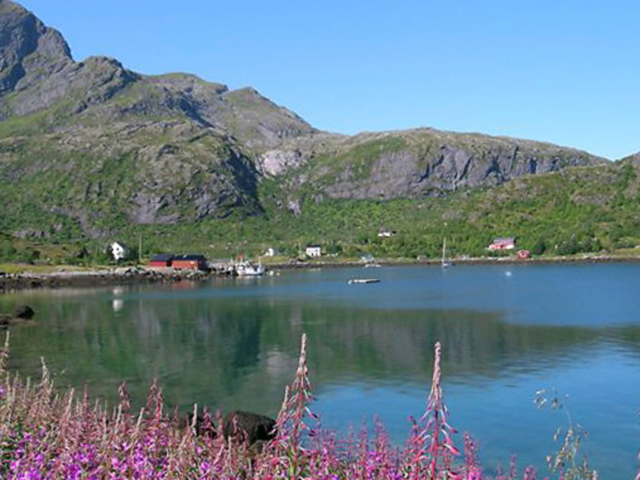 Holiday house Lofoten (315977), Ramberg, , Northern Norway, Norway, picture 20