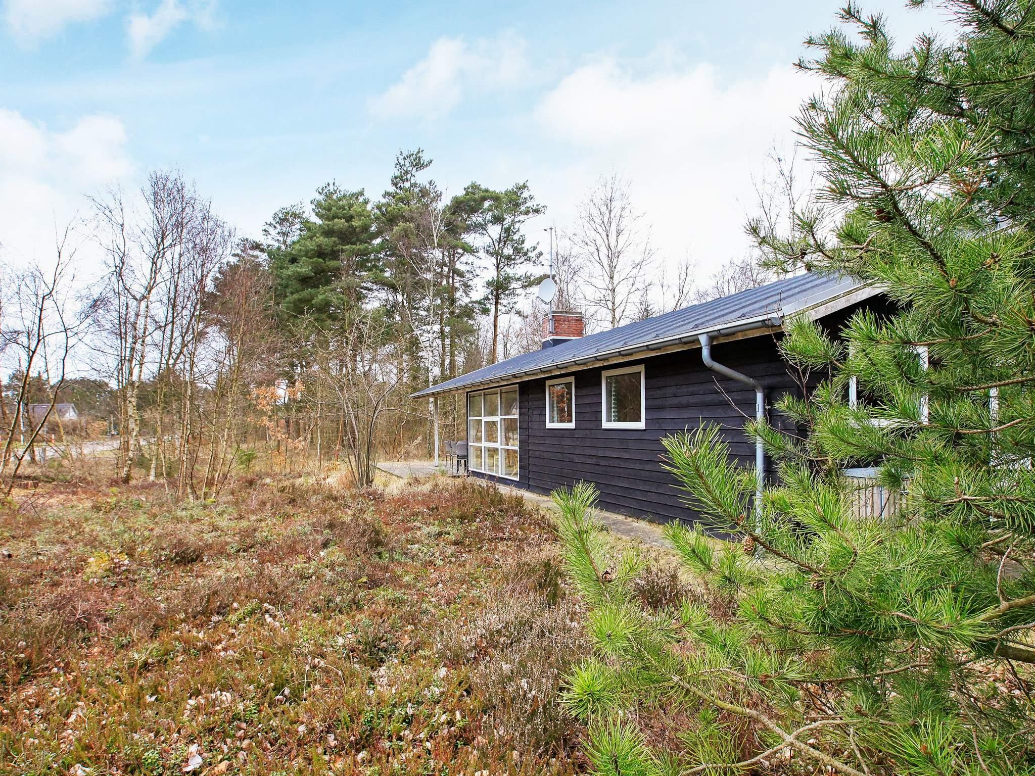 Ferienhaus Hou/Lagunen (88163), Hou, , Nordostjütland, Dänemark, Bild 19