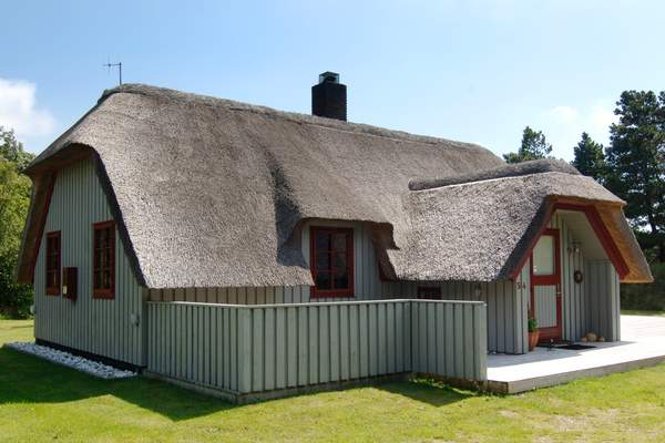 Maison de vacances Blåvand (88562), Blåvand, , Jutland Ouest, Danemark, image 2