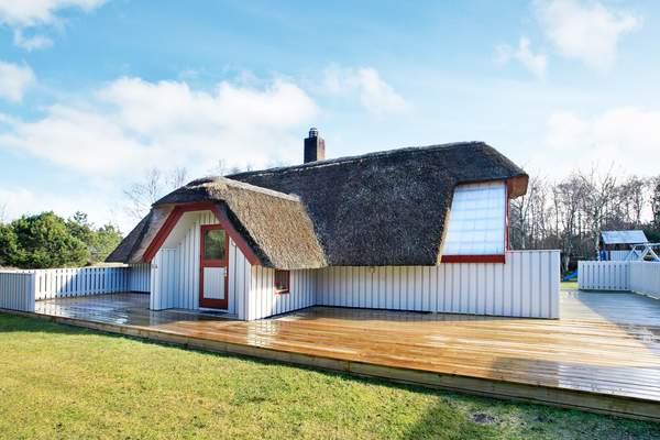 Maison de vacances Blåvand (88562), Blåvand, , Jutland Ouest, Danemark, image 12