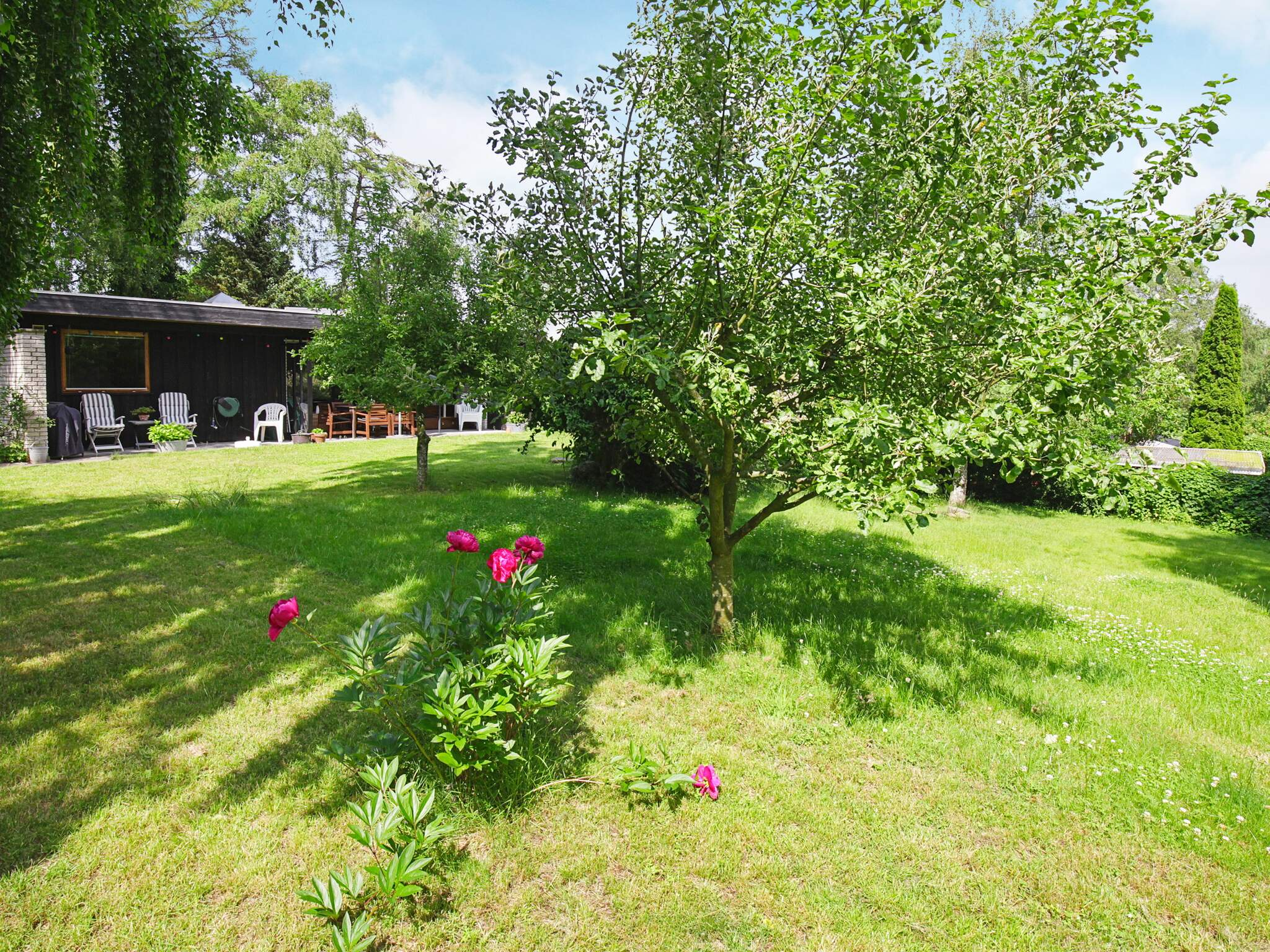 Ferienhaus Rågeleje (2628463), Rågeleje, , Nordseeland, Dänemark, Bild 15