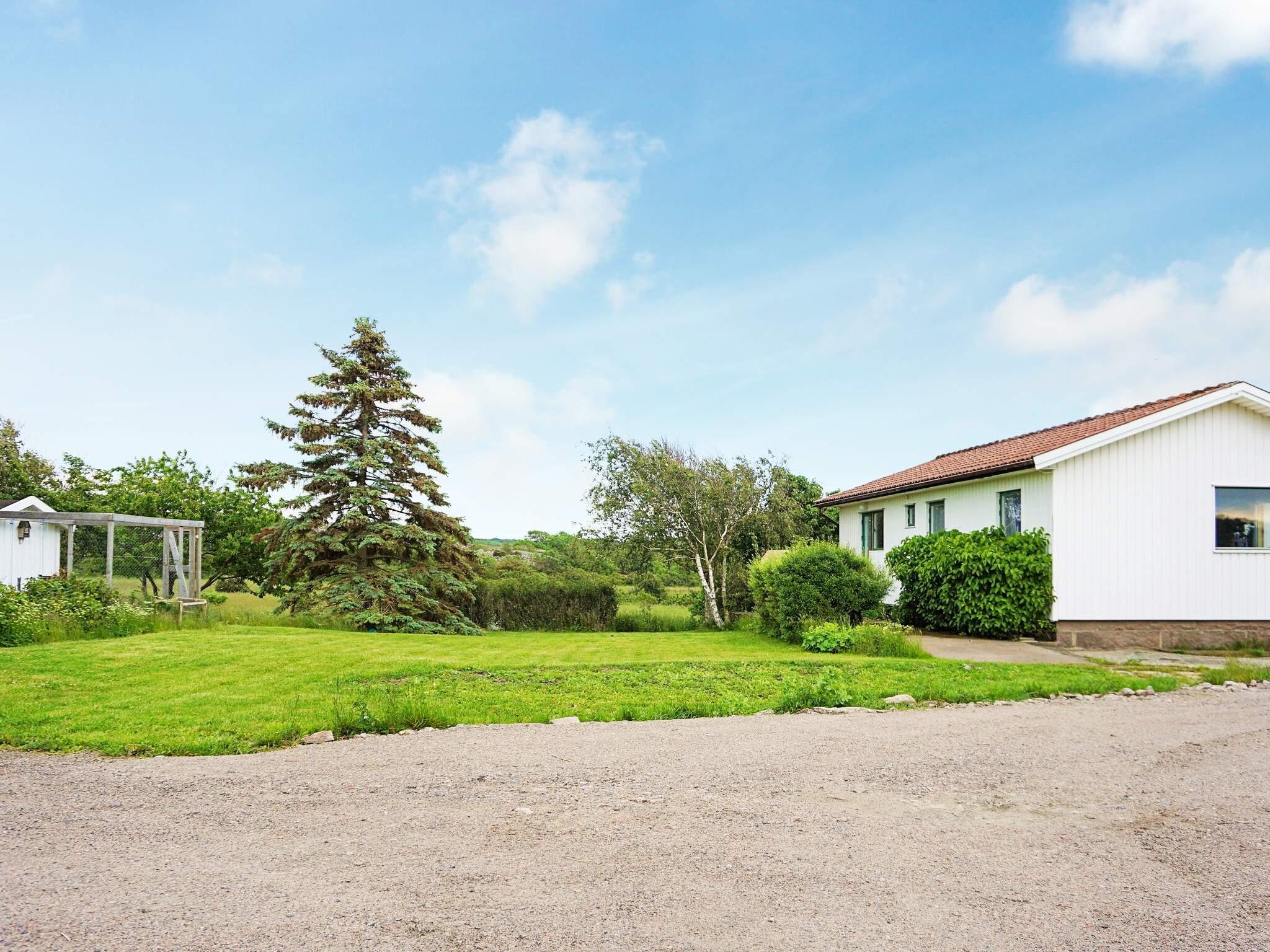 Ferienhaus Väjern (2636847), Kungshamn, Västra Götaland län, Westschweden, Schweden, Bild 12