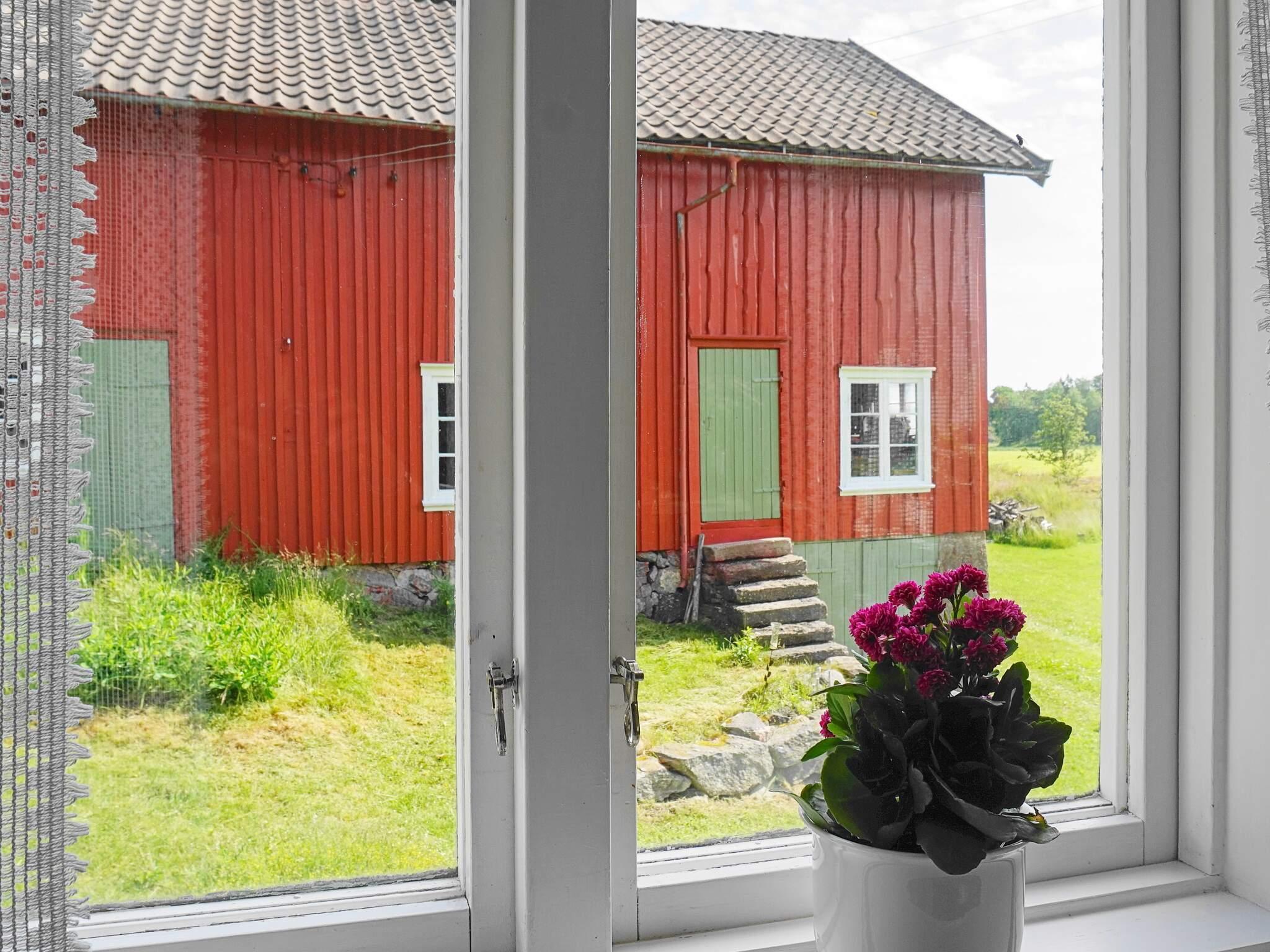 Ferienhaus Orust/Tegneby (2636850), Tegneby, Västra Götaland län, Westschweden, Schweden, Bild 3