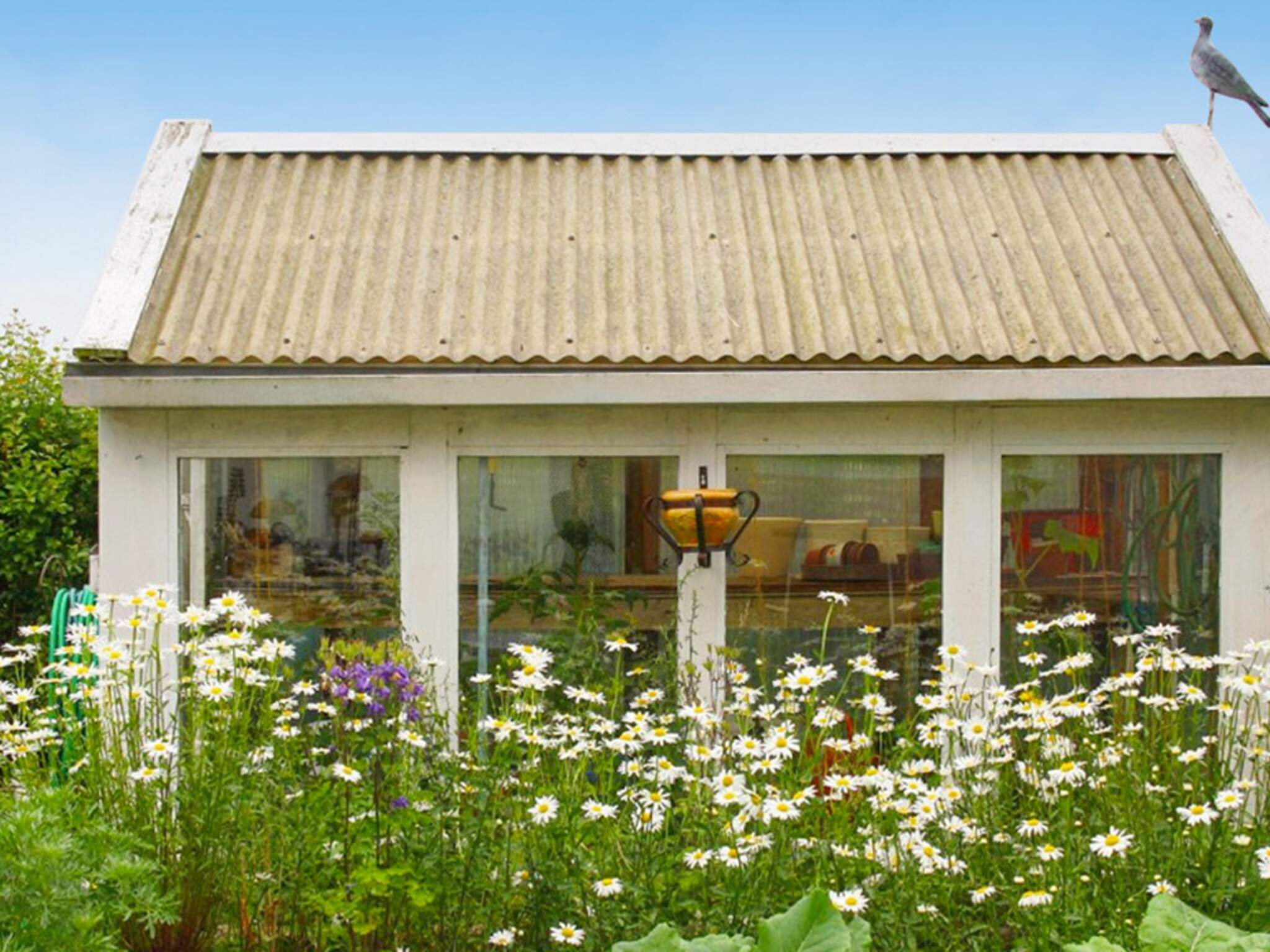 Ferienhaus Simrishamn (2701533), Simrishamn, Skane län, Südschweden, Schweden, Bild 19