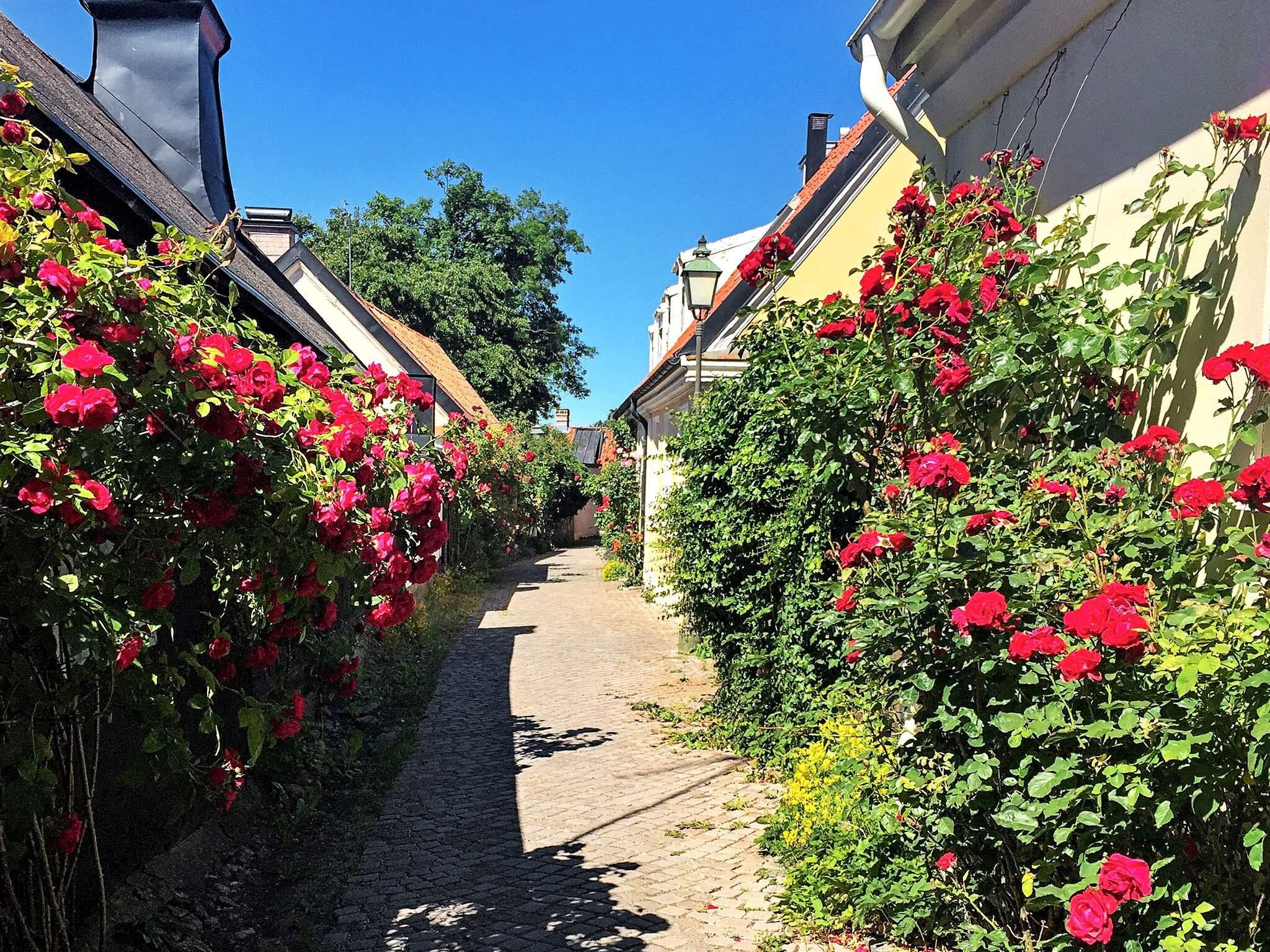 Ferienhaus Visby (2741744), Visby (SE), Gotlands län, Südschweden, Schweden, Bild 14