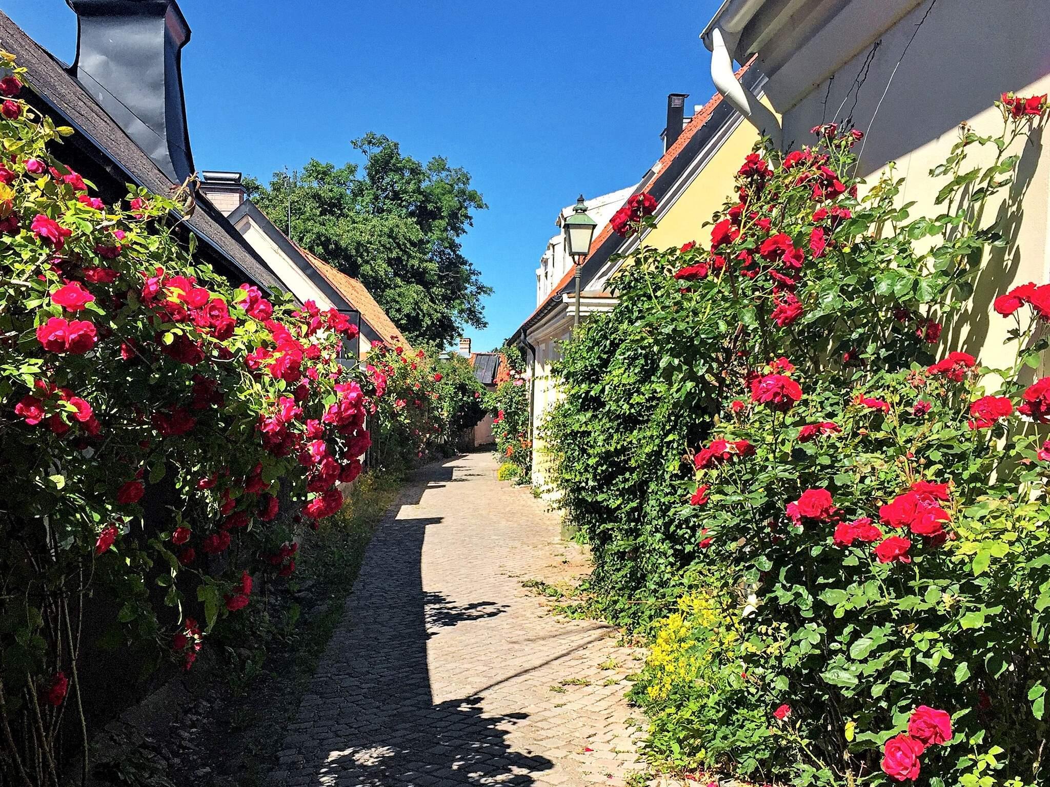 Ferienhaus Visby (2741746), Visby (SE), Gotlands län, Südschweden, Schweden, Bild 19