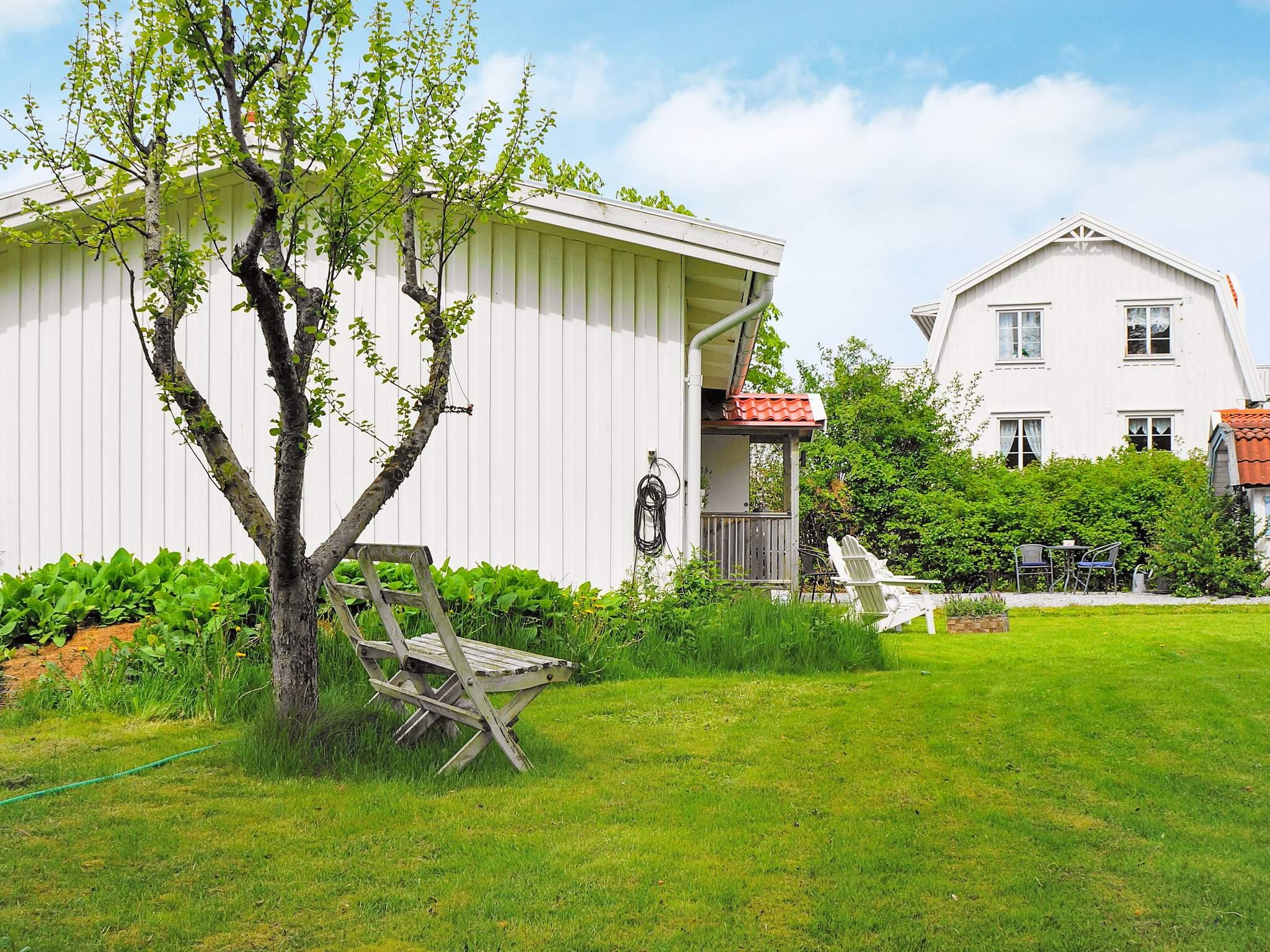 Ferienhaus Orust/Ellös (2354327), Ellös, Västra Götaland län, Westschweden, Schweden, Bild 19