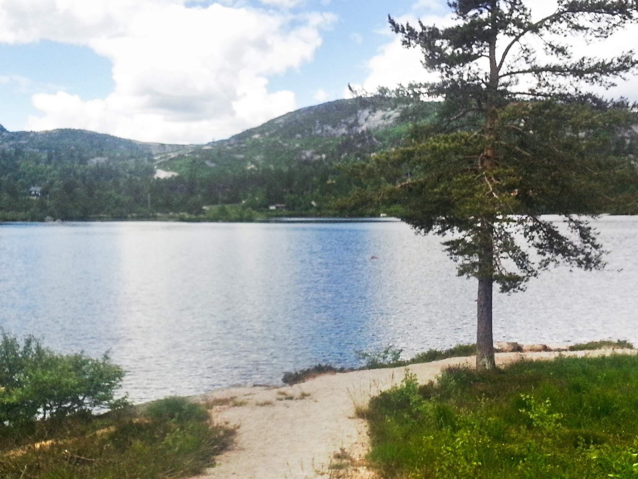 Ferienhaus Åseral (2354339), Åseral, Agder West, Südnorwegen, Norwegen, Bild 14