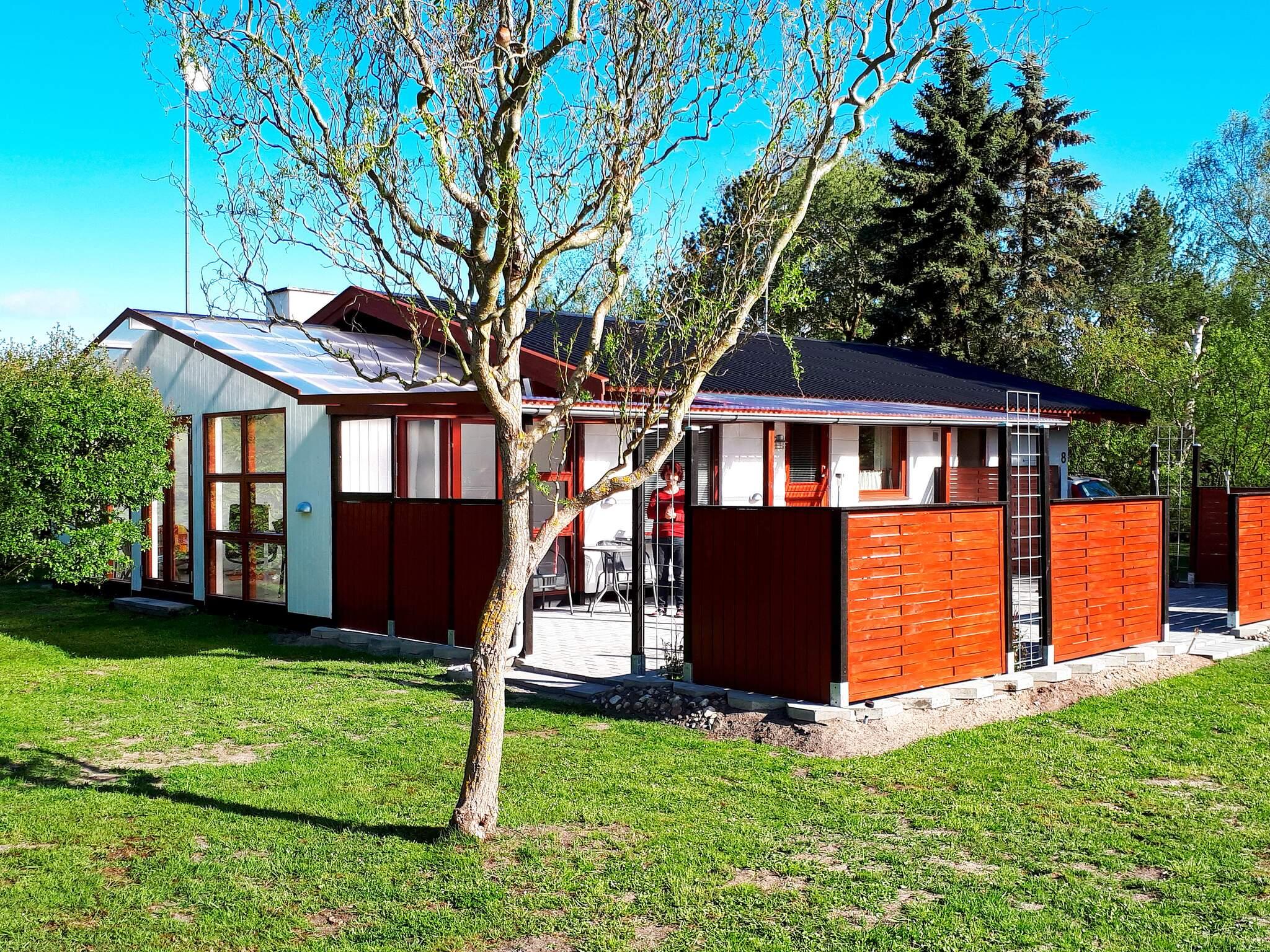 Ferienhaus Bredfjed (81924), Bredfjed, , Lolland, Dänemark, Bild 14