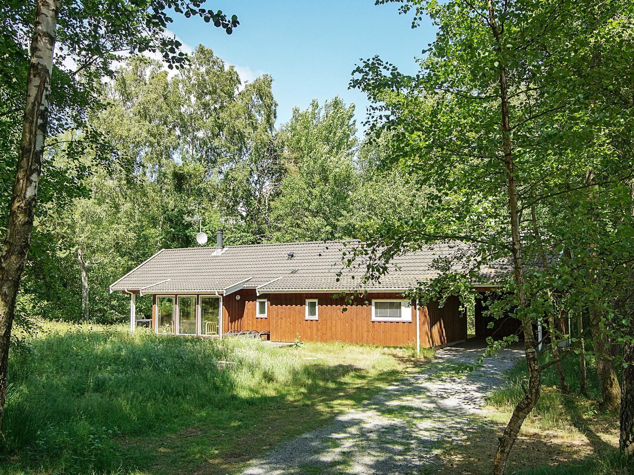 Maison de vacances Dueodde (82560), Nexø, , Bornholm, Danemark, image 12