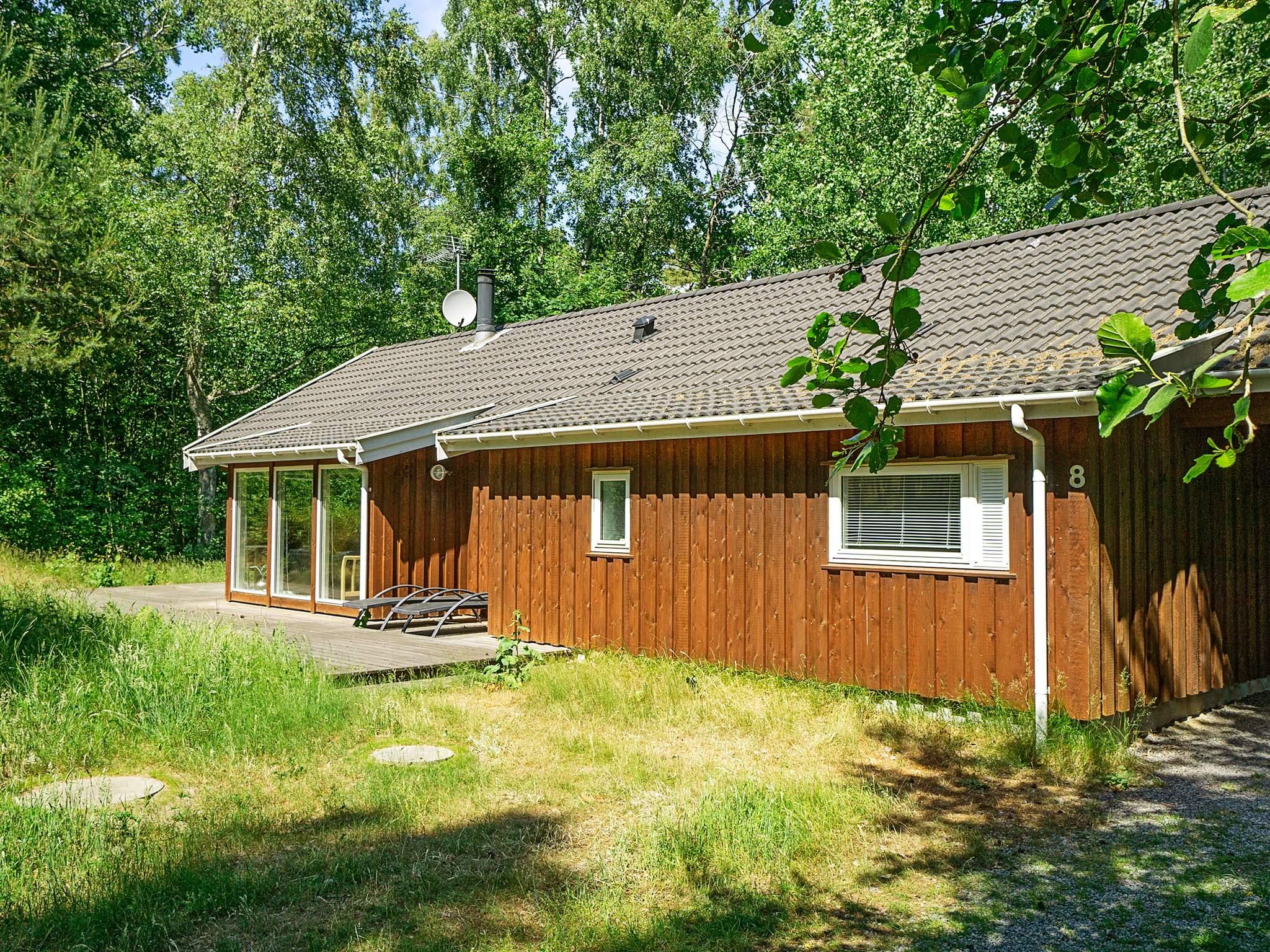 Maison de vacances Dueodde (82560), Nexø, , Bornholm, Danemark, image 14