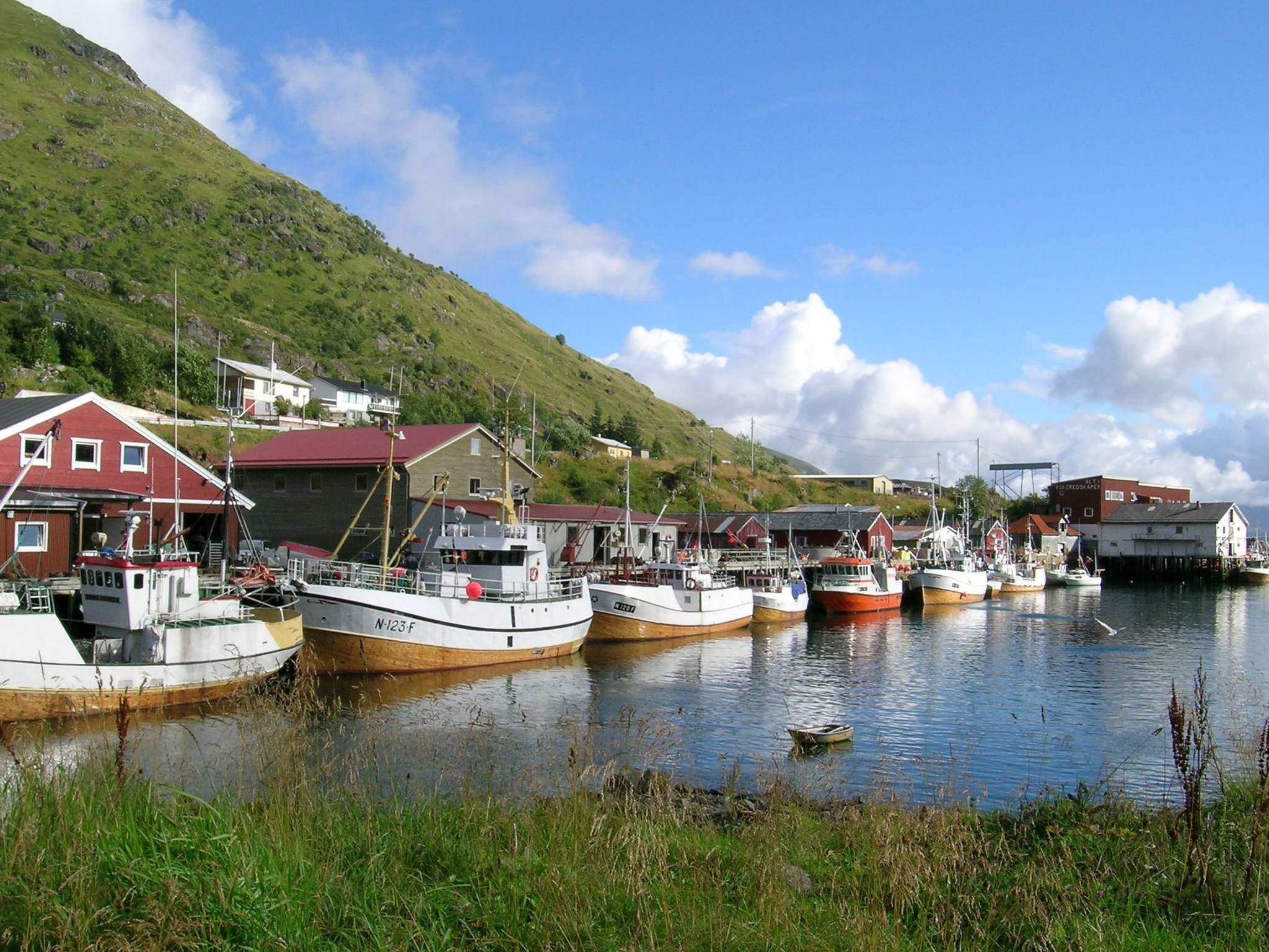 Ferienhaus Lofoten (83794), Leknes, , Nordnorwegen, Norwegen, Bild 7