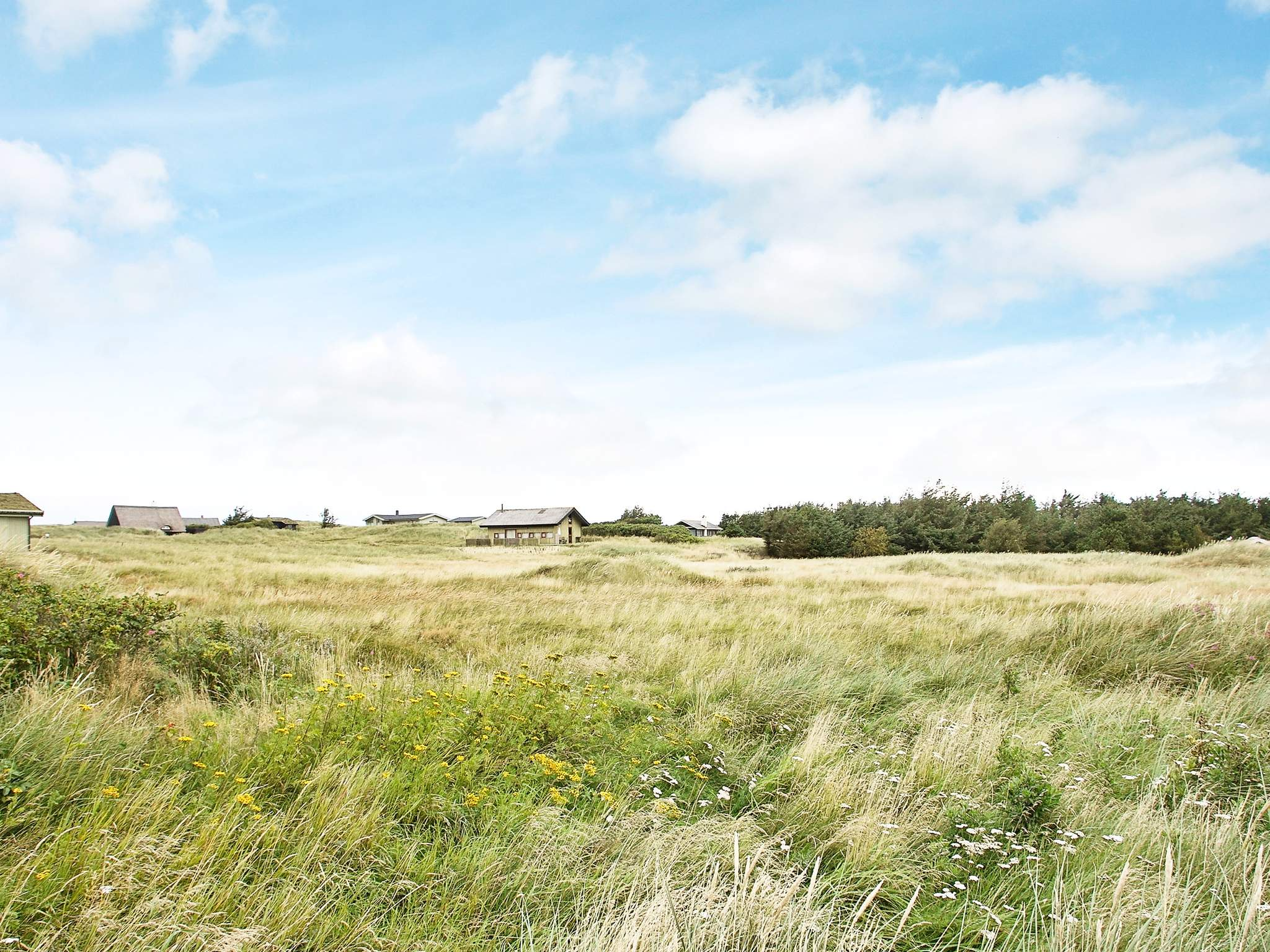 Ferienhaus Grønhøj Strand (83808), Løkken, , Nordwestjütland, Dänemark, Bild 28