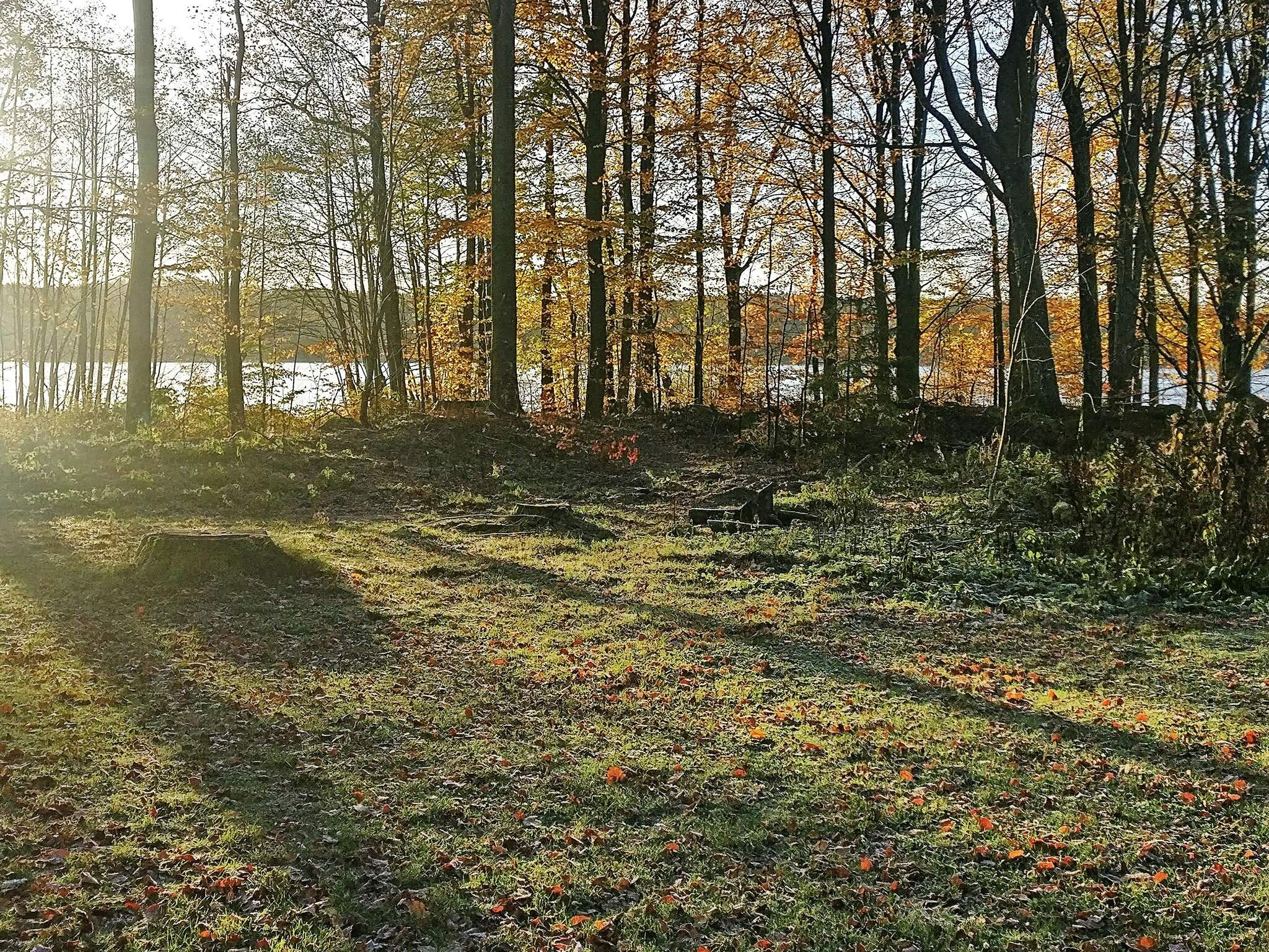 Ferienhaus Sösdala (83824), Sösdala, Skane län, Südschweden, Schweden, Bild 15