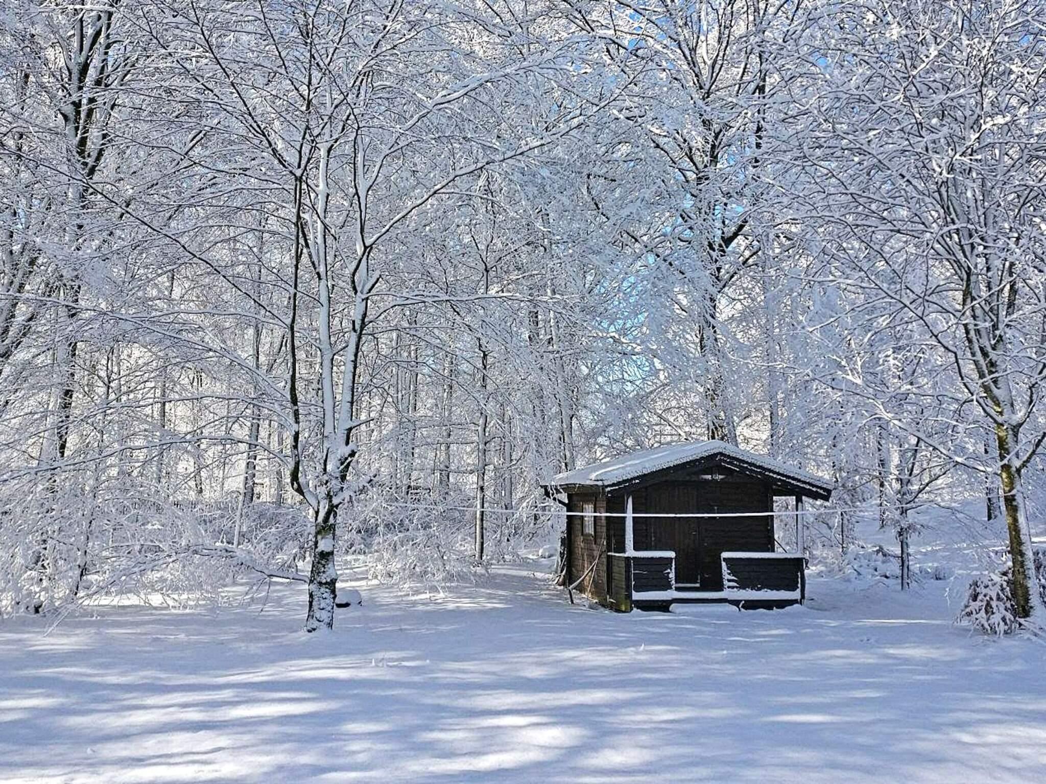 Ferienhaus Sösdala (83824), Sösdala, Skane län, Südschweden, Schweden, Bild 24