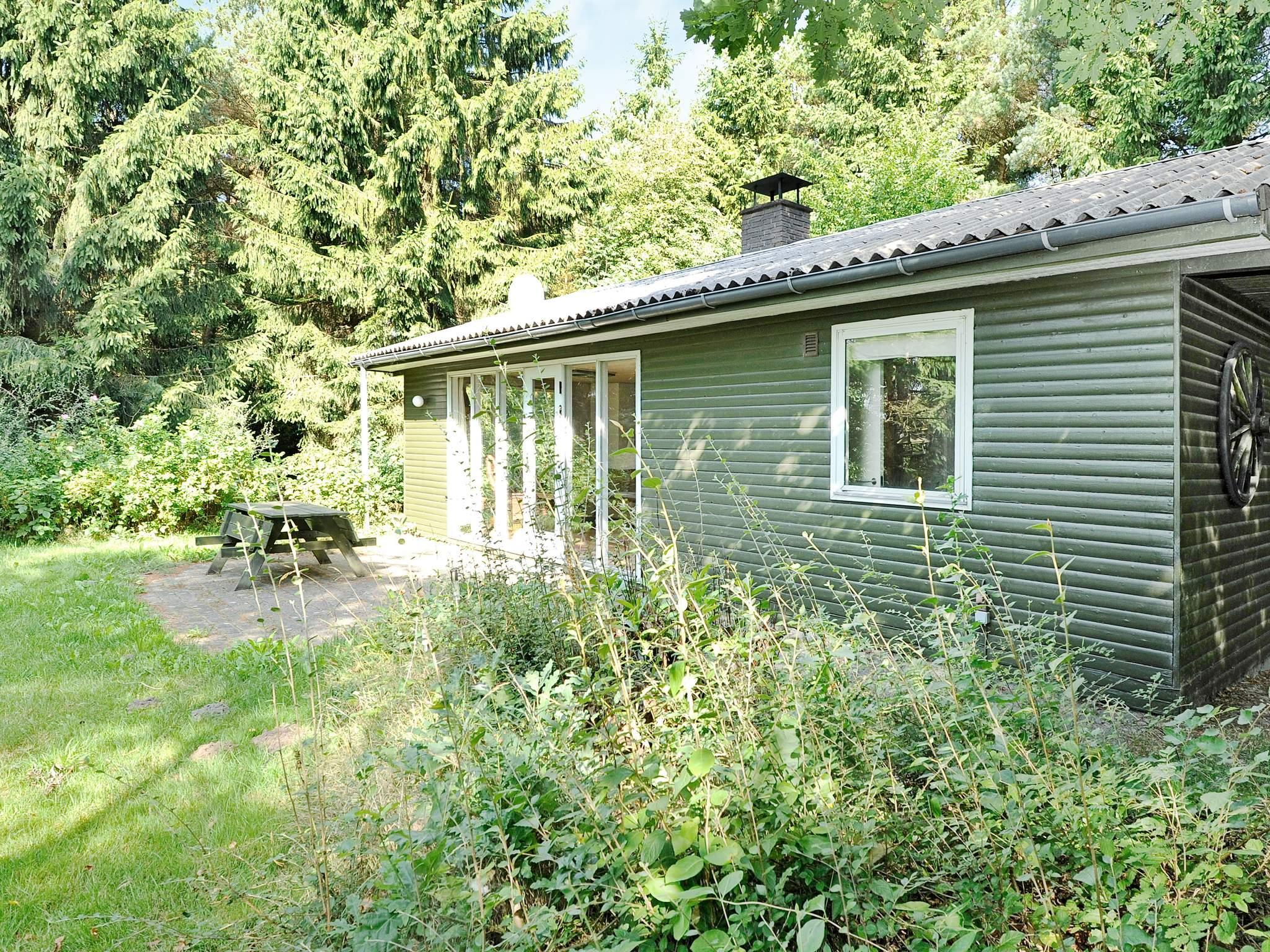 Maison de vacances Guldforhoved (84103), Guldforhoved, , Jutland Ouest, Danemark, image 1
