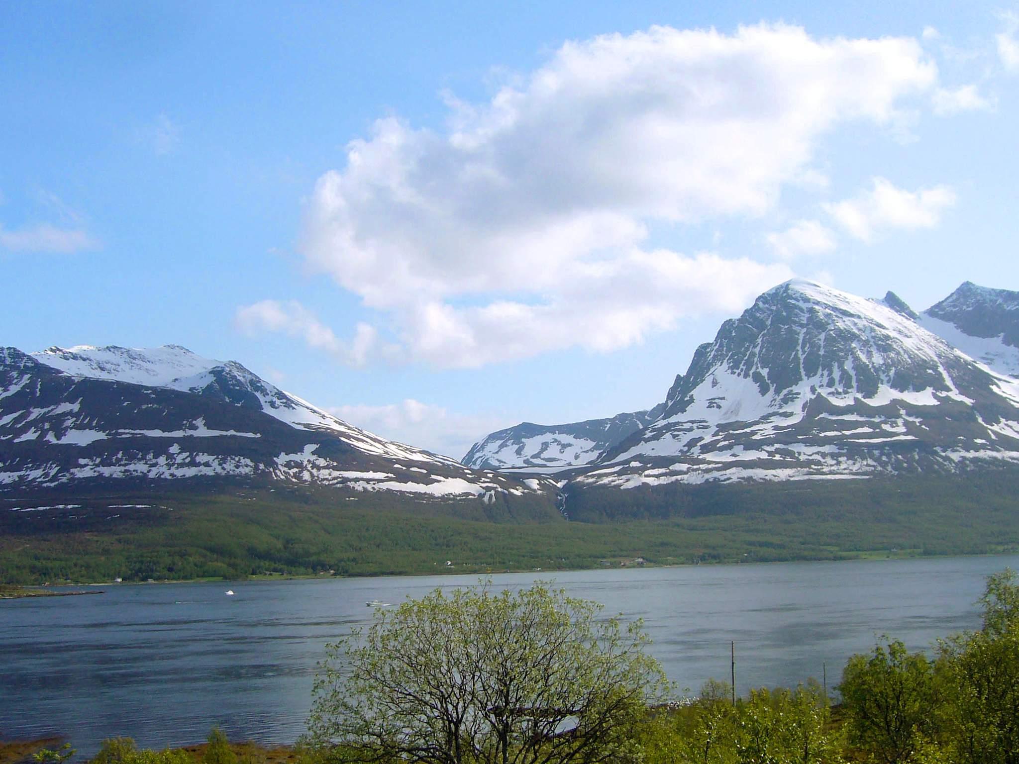 Ferienhaus Troms (84684), Straumsbukta, , Nordnorwegen, Norwegen, Bild 7