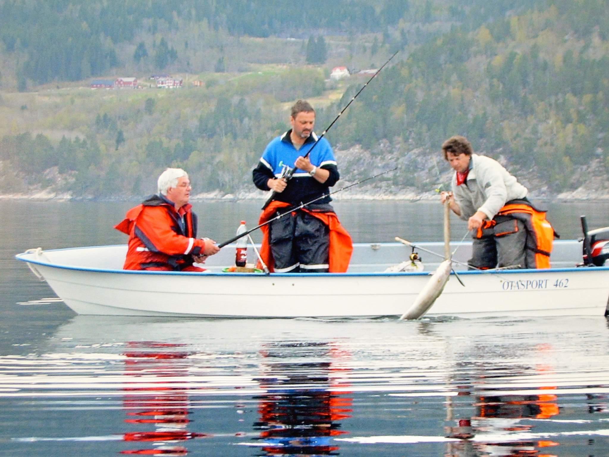 Ferienhaus Eidsvåg (84695), Eidsvåg, More - Romsdal, Westnorwegen, Norwegen, Bild 68