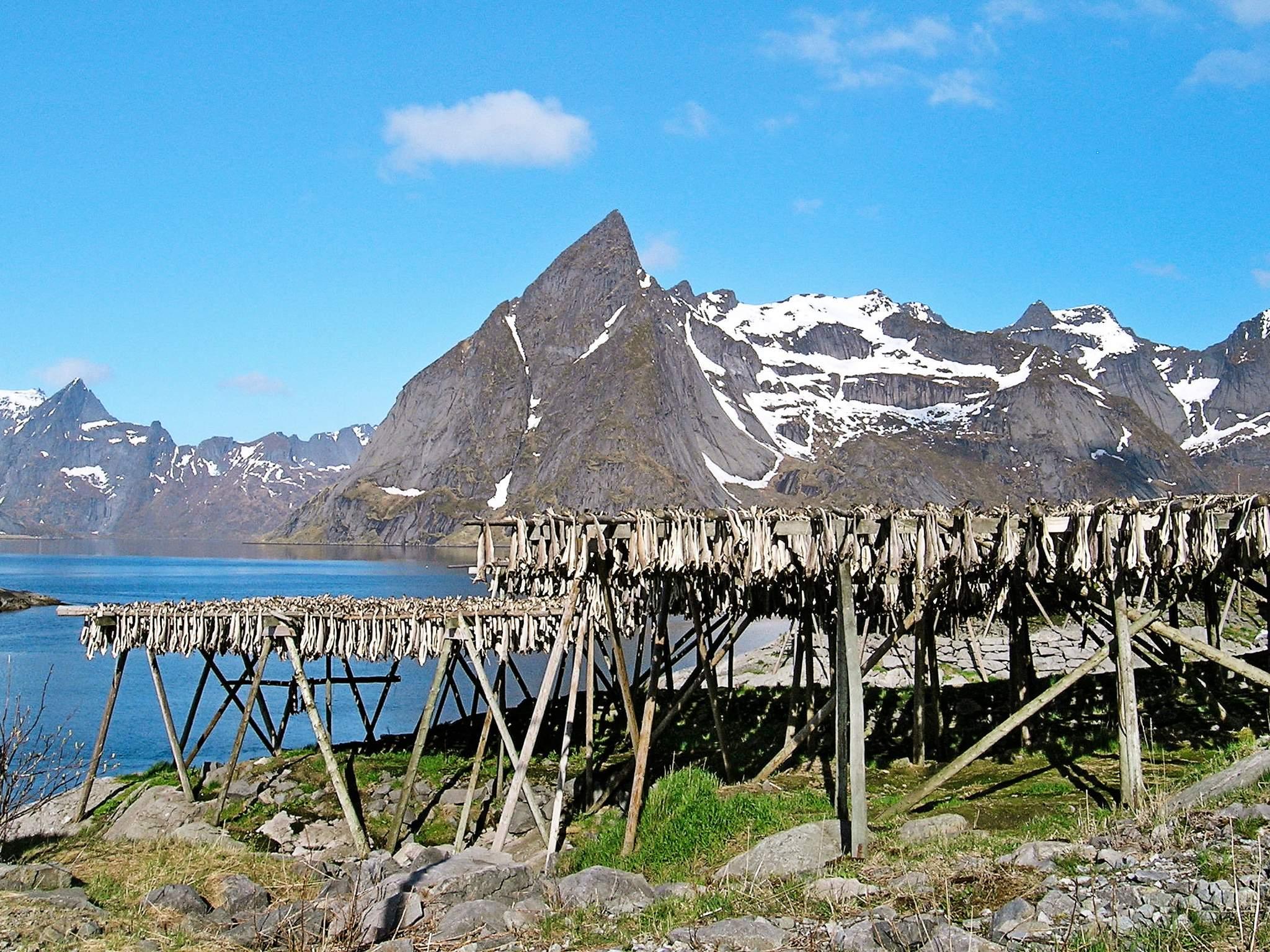 Ferienhaus Lofoten (83794), Leknes, , Nordnorwegen, Norwegen, Bild 8