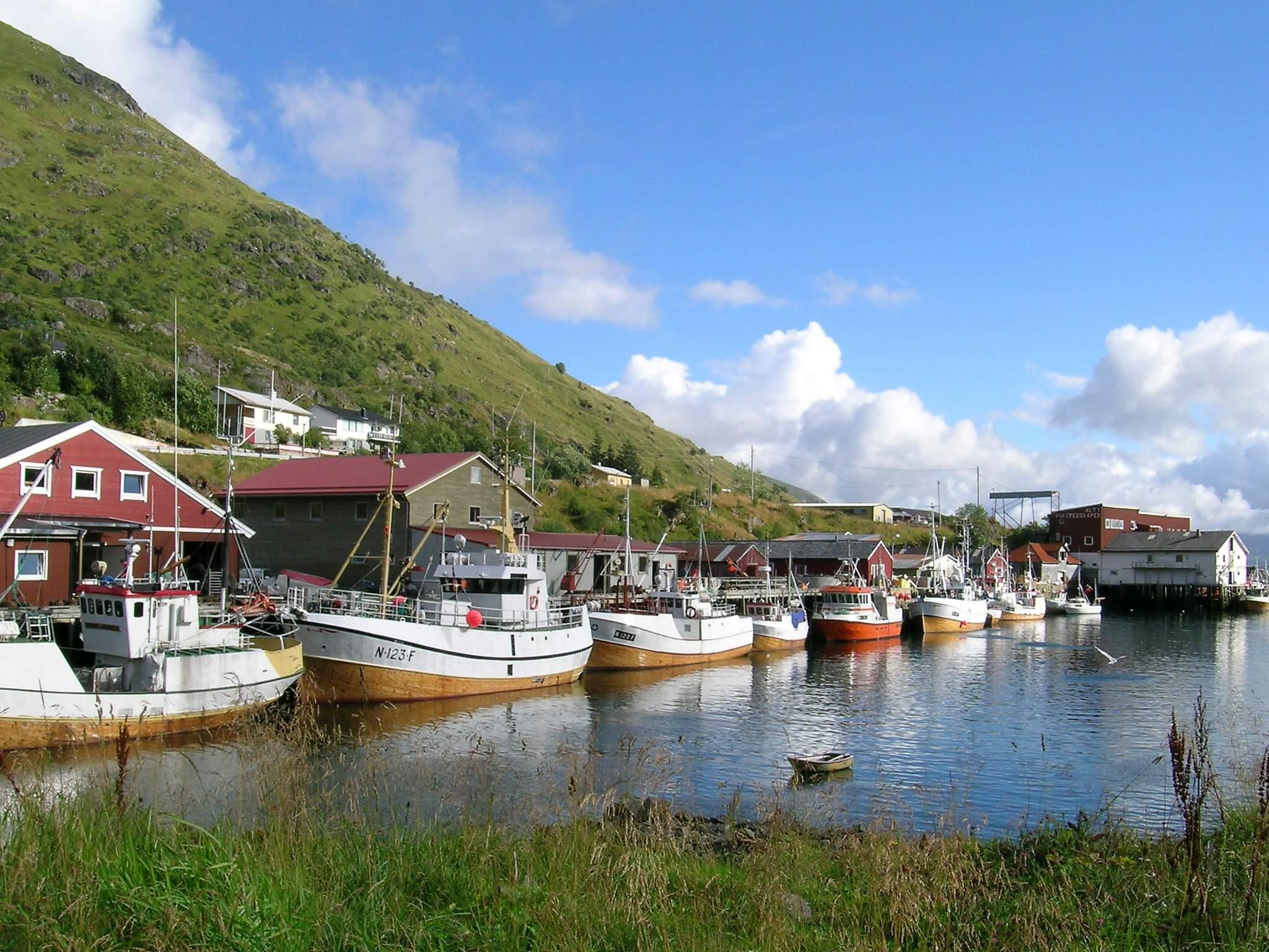 Ferienhaus Lofoten (85300), Leknes, , Nordnorwegen, Norwegen, Bild 16