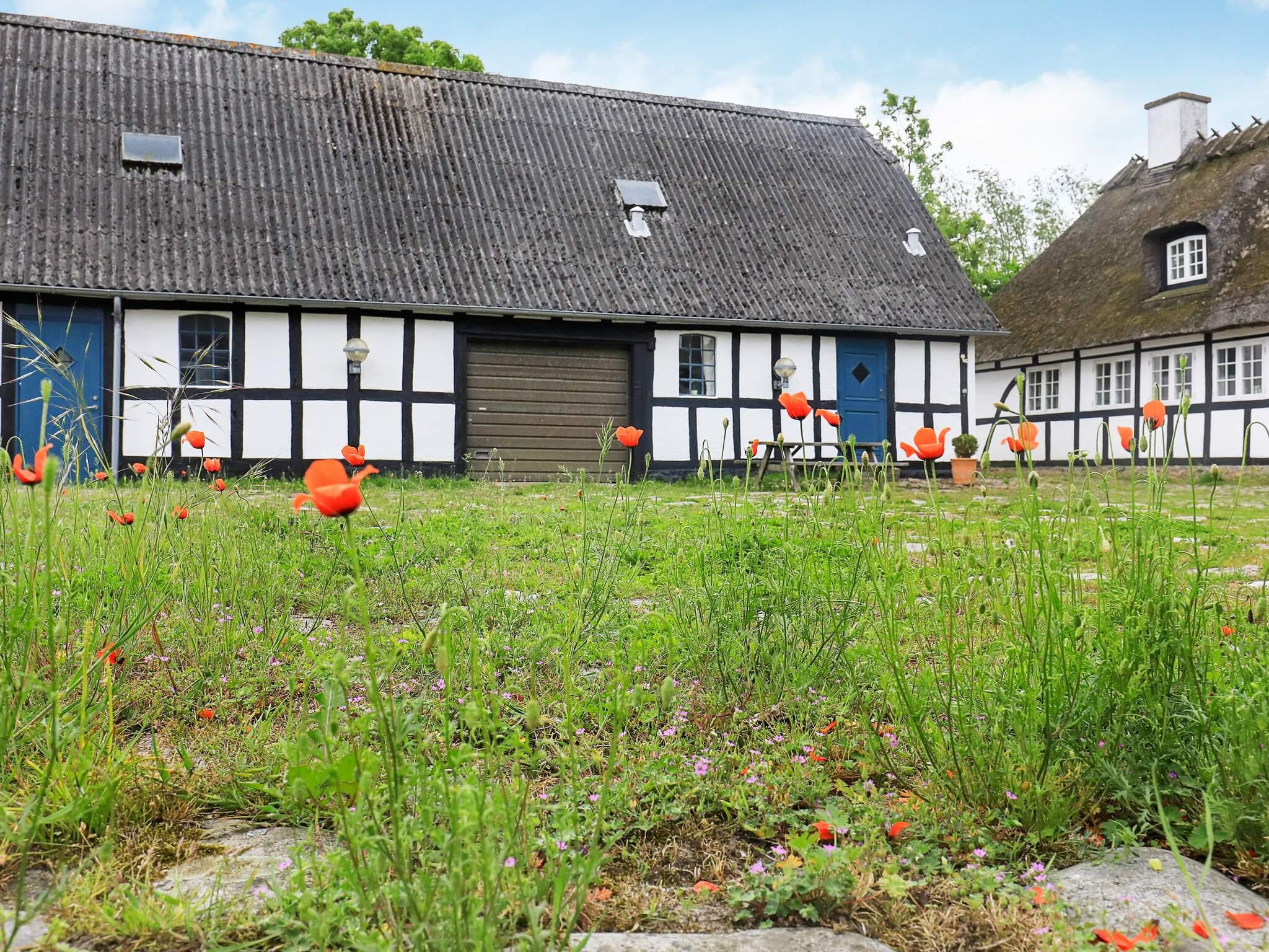 Maison de vacances Horne (85665), Horne, , Fionie, Danemark, image 29