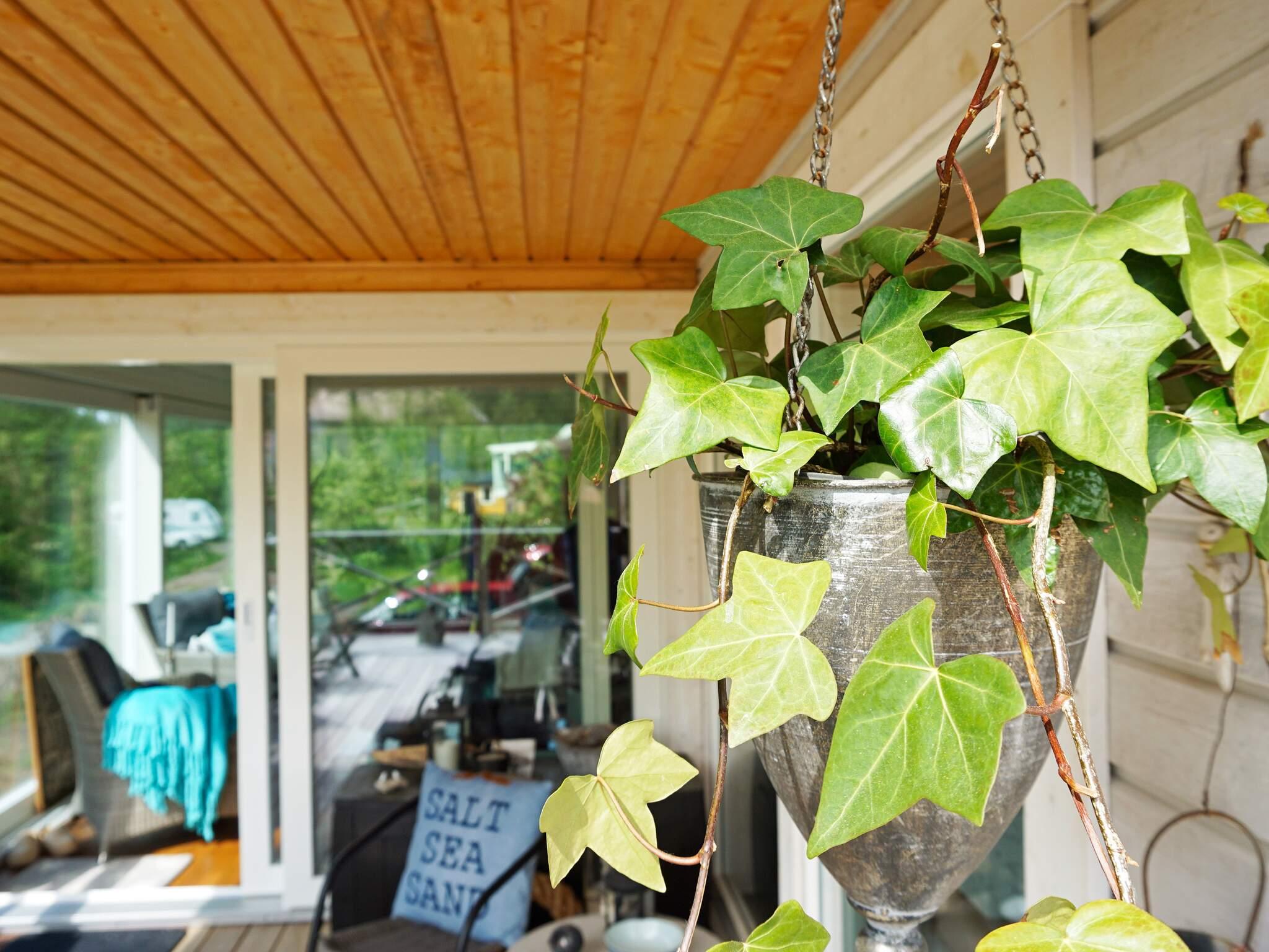 Ferienhaus Kungälv (2627953), Kärna, Västra Götaland län, Westschweden, Schweden, Bild 16