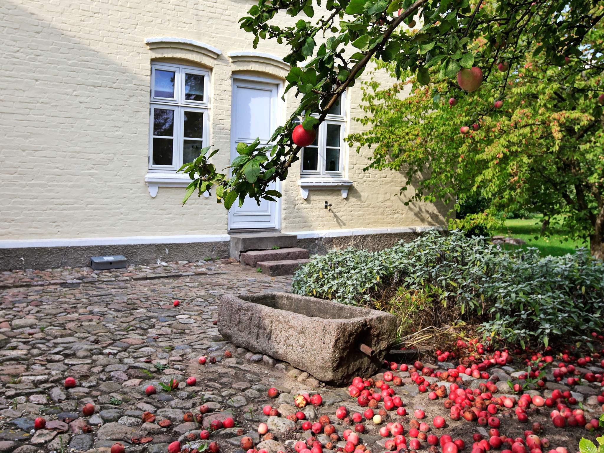 Maison de vacances Munkebo (86624), Munkebo, , Fionie, Danemark, image 29