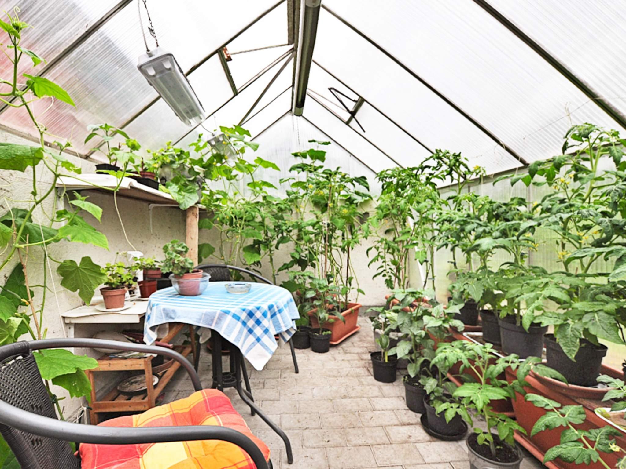 Ferienhaus Finjasjön (86936), Hässleholm, Skane län, Südschweden, Schweden, Bild 15