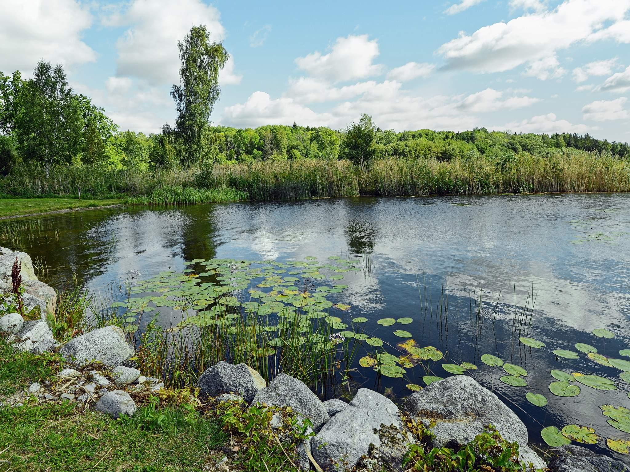 Ferienhaus Strängnäs (93280), Strängnäs, Södermanlands län, Mittelschweden, Schweden, Bild 21