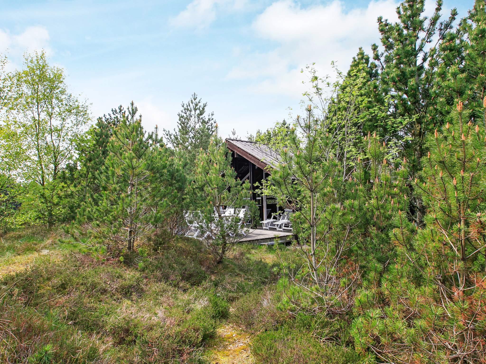 Ferienhaus Lodskovvad (124818), Lodskovvad, , Nordostjütland, Dänemark, Bild 19