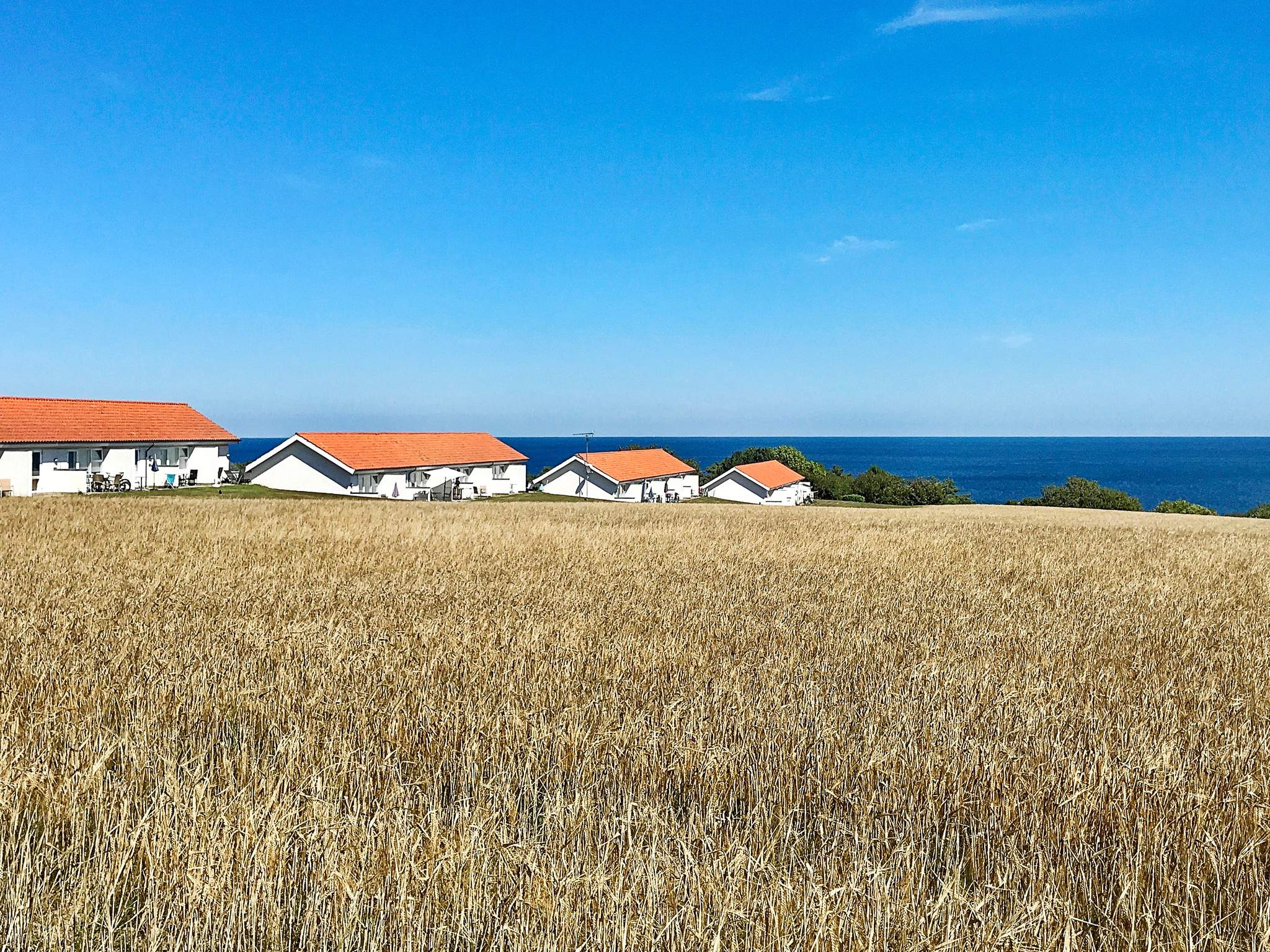 Ferienwohnung Sandkås (259917), Sandkås, , Bornholm, Dänemark, Bild 11