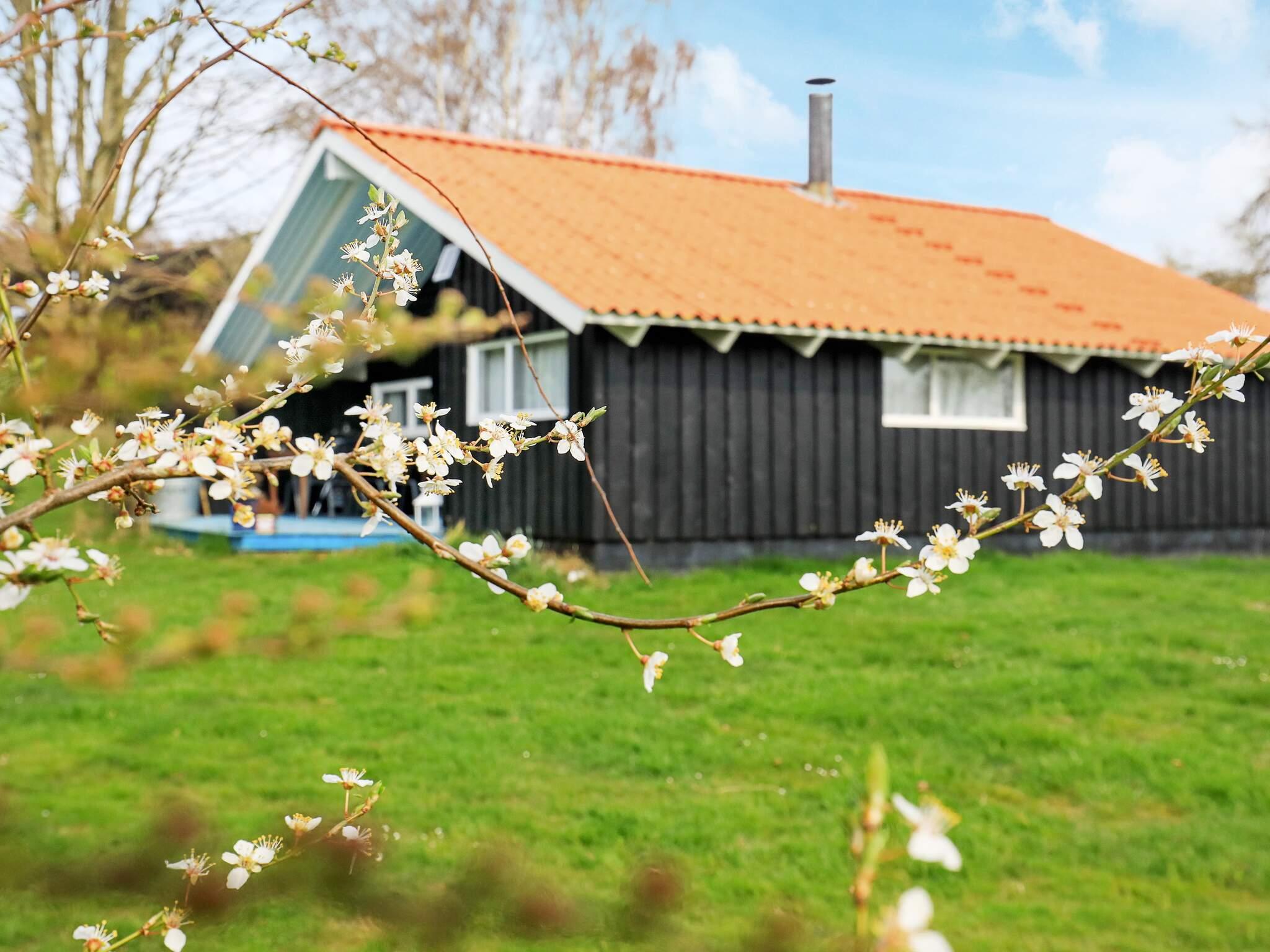 Ferienhaus Råbylille Strand (125172), Råbylille, , Møn, Dänemark, Bild 13