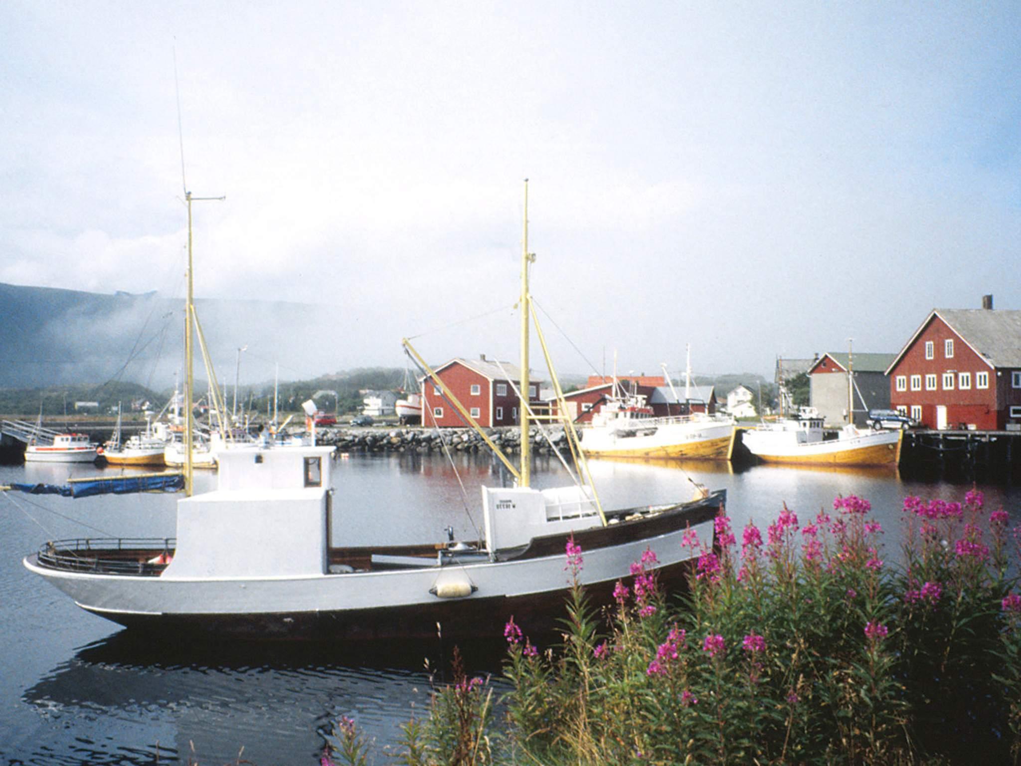 Ferienhaus Lofoten (135385), Laukvik, , Nordnorwegen, Norwegen, Bild 22