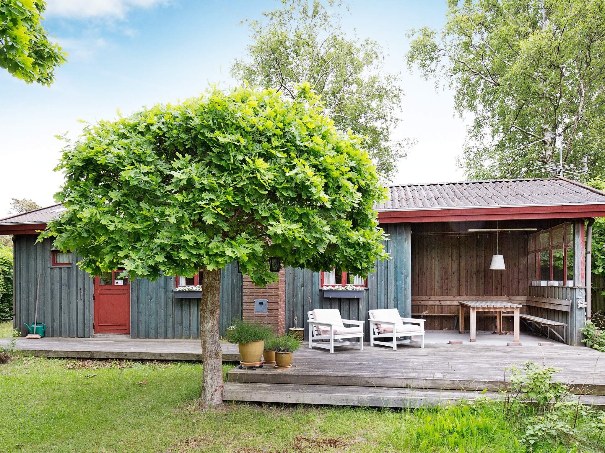 Ferienhaus Stillinge Strand (207955), Slagelse, , Westseeland, Dänemark, Bild 1