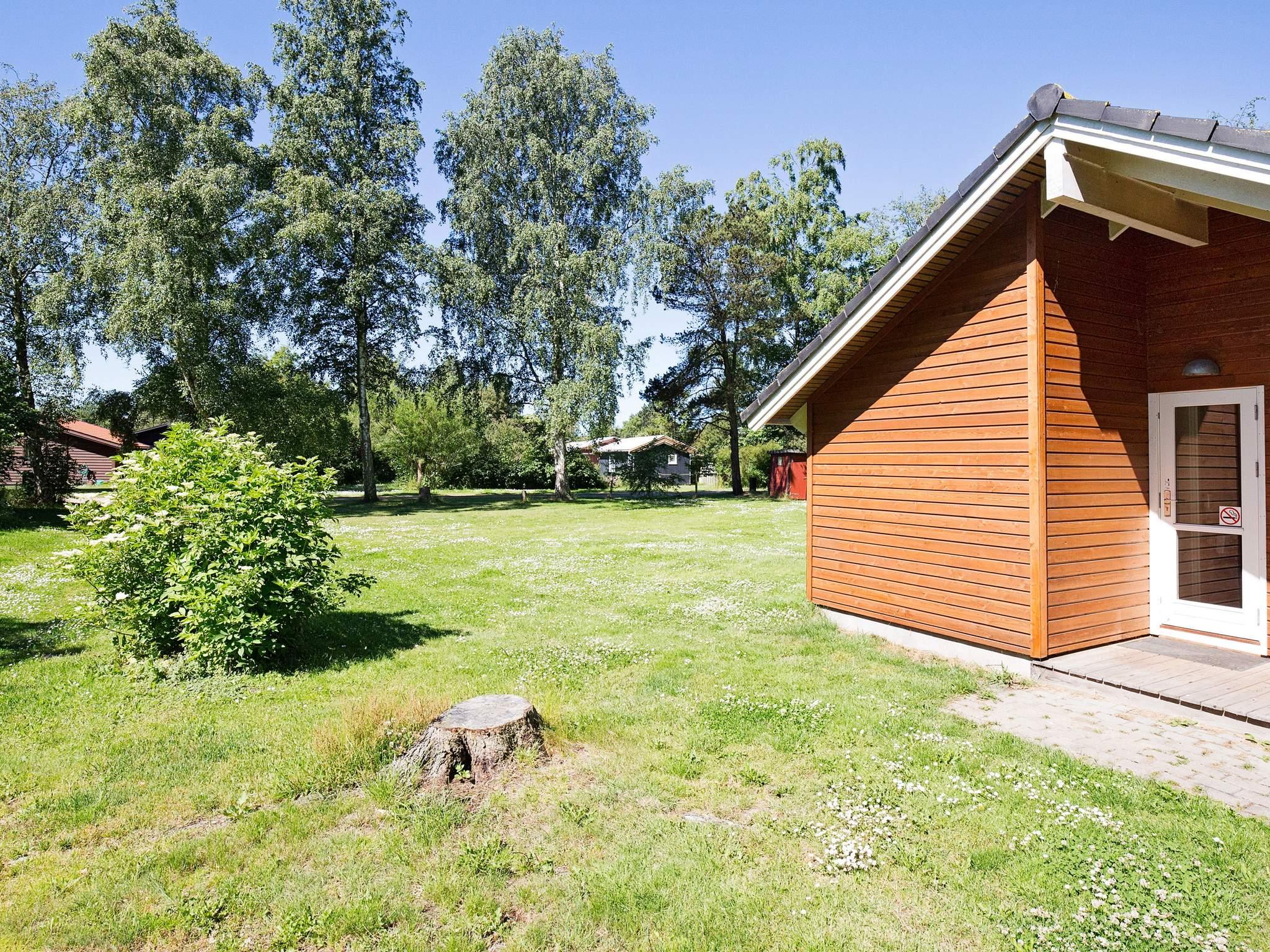 Ferienhaus Ellinge Lyng (208418), Højby, , Westseeland, Dänemark, Bild 16