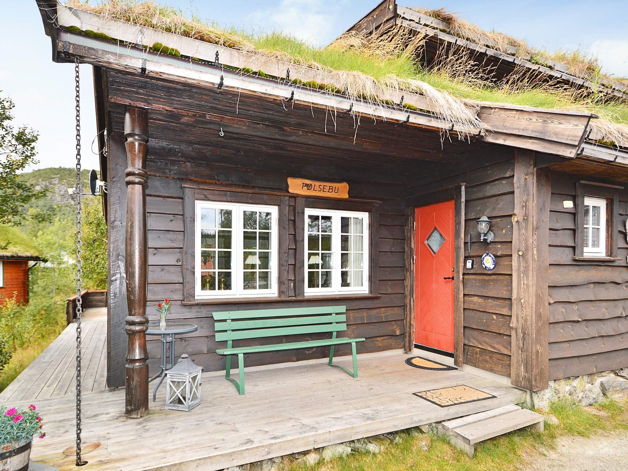 Ferienhaus Hovden (222102), Hovden, Agder Ost, Südnorwegen, Norwegen, Bild 1