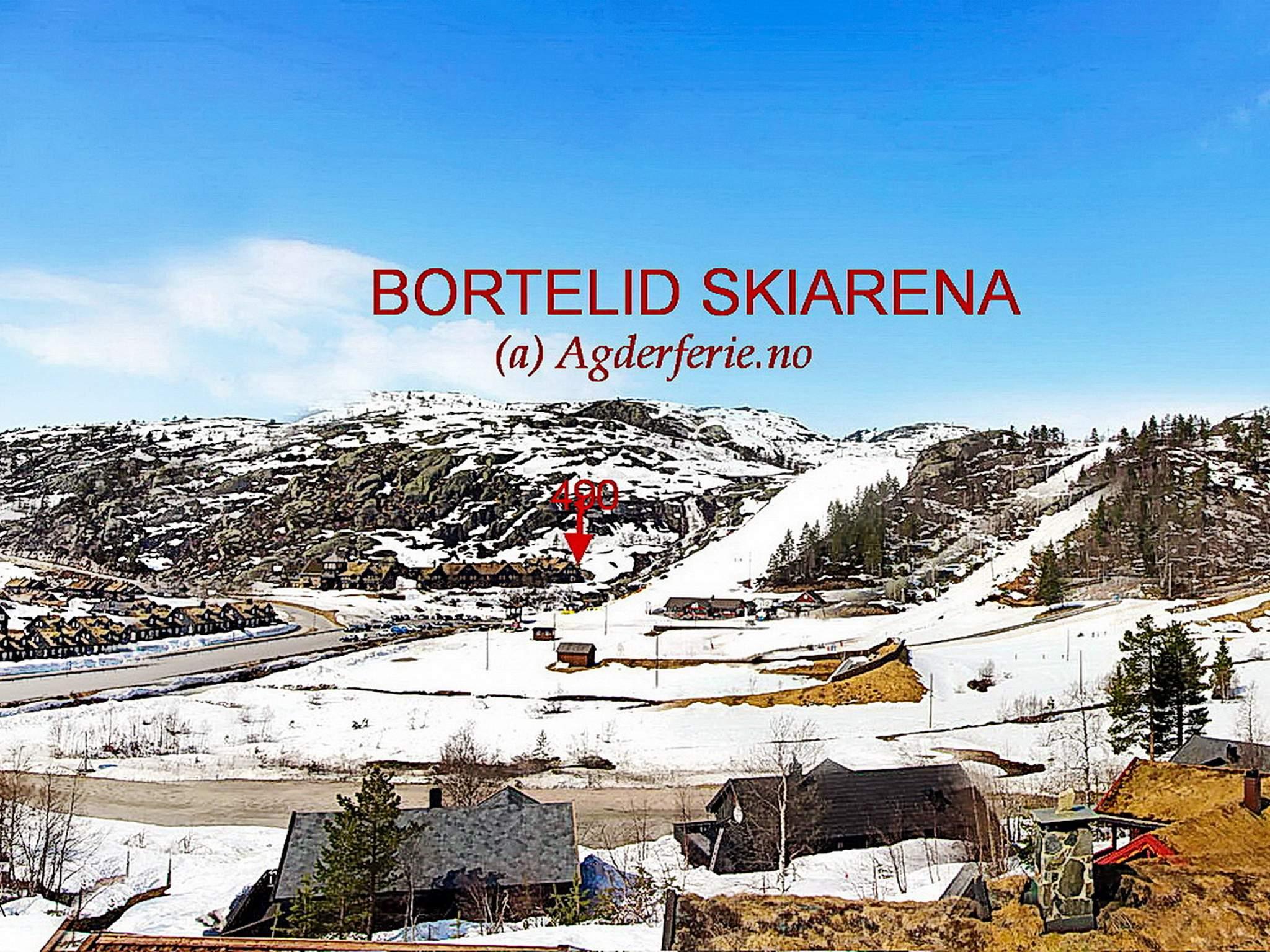 Ferienhaus Bortelid (253090), Åseral, Agder West, Südnorwegen, Norwegen, Bild 20
