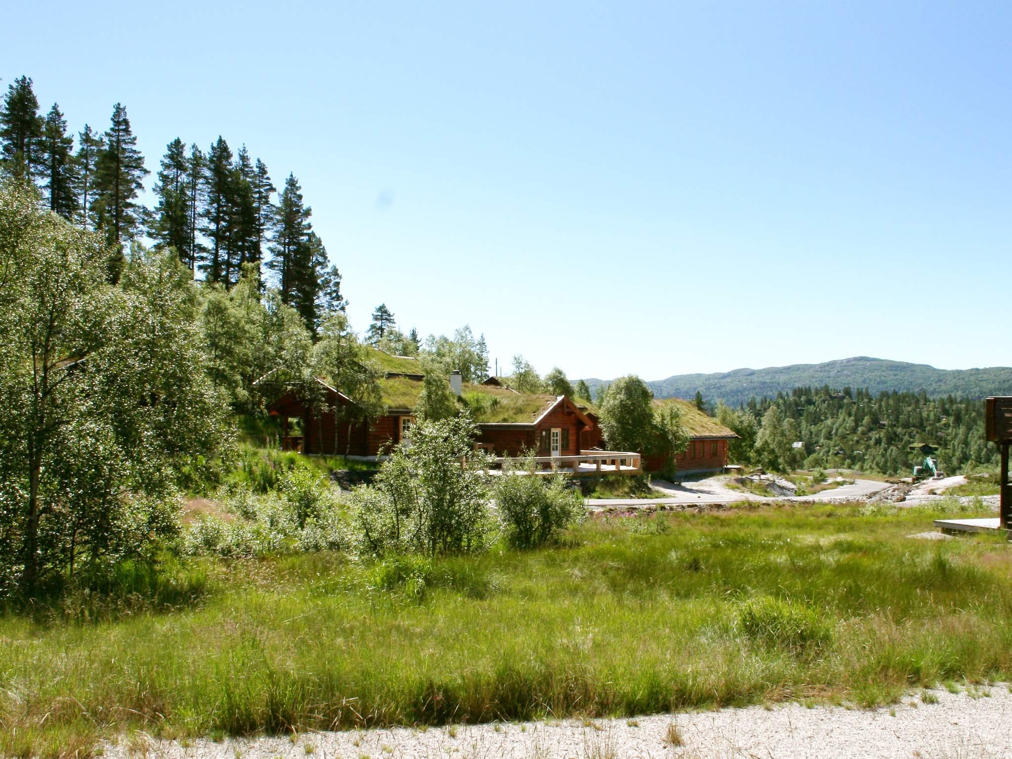 Ferienhaus Bortelid (253090), Åseral, Agder West, Südnorwegen, Norwegen, Bild 23