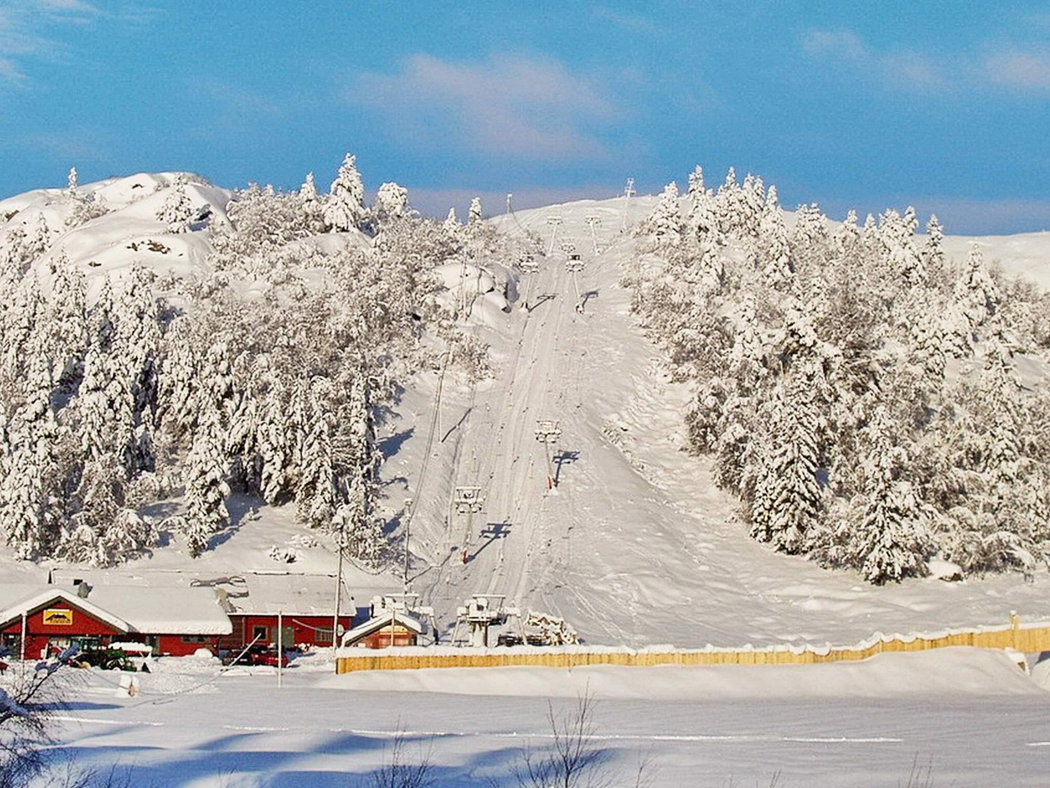 Ferienhaus Bortelid (253090), Åseral, Agder West, Südnorwegen, Norwegen, Bild 15