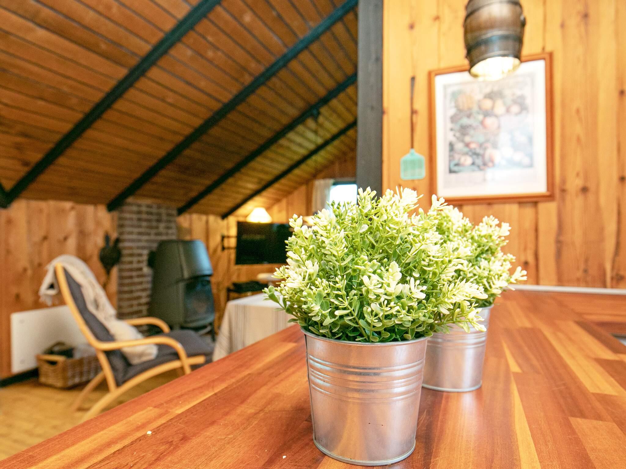 Maison de vacances Eskov Strandpark (264050), Roslev, , Limfjord, Danemark, image 5