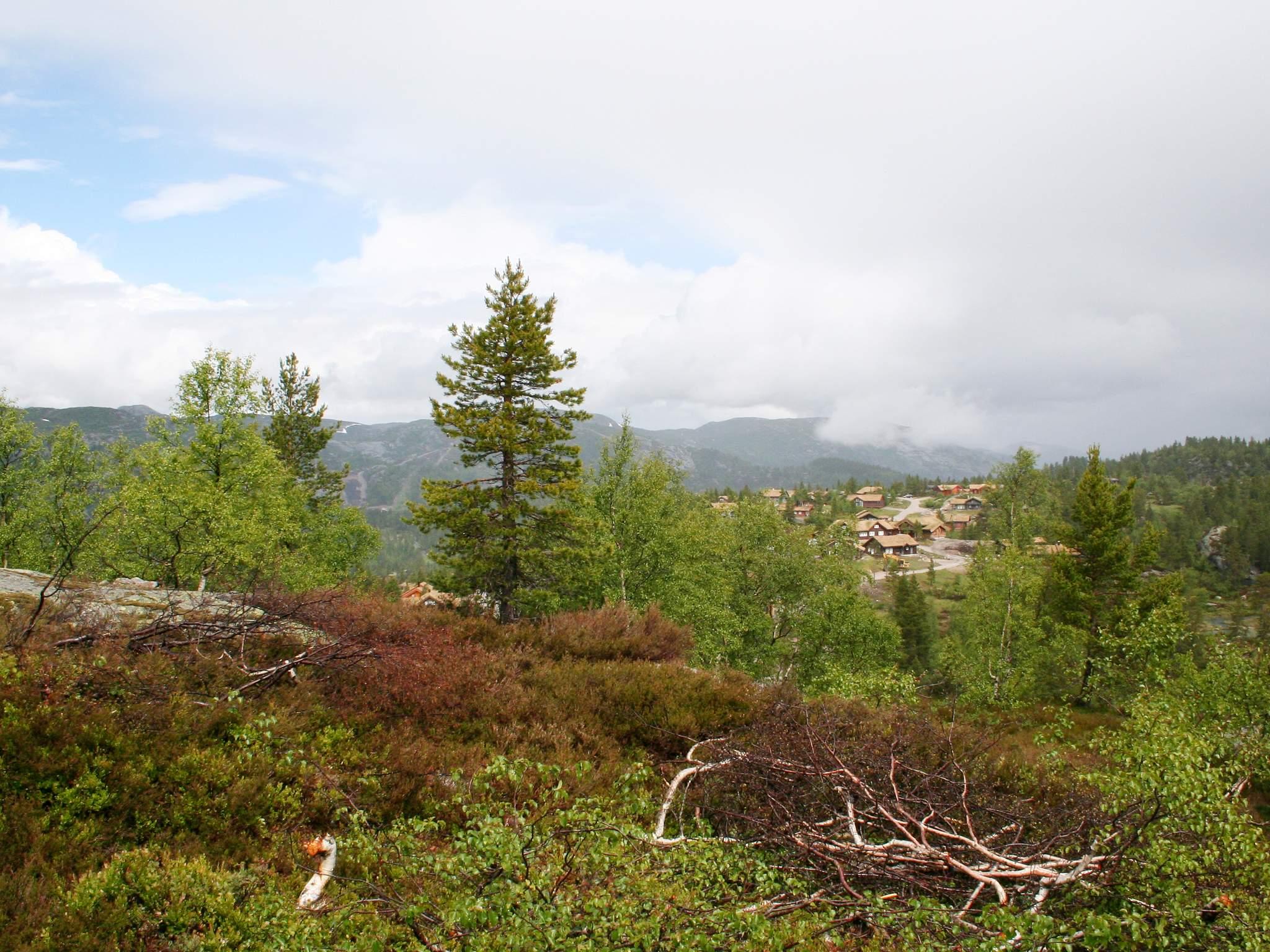 Ferienhaus Bortelid (316813), Åseral, Agder West, Südnorwegen, Norwegen, Bild 26